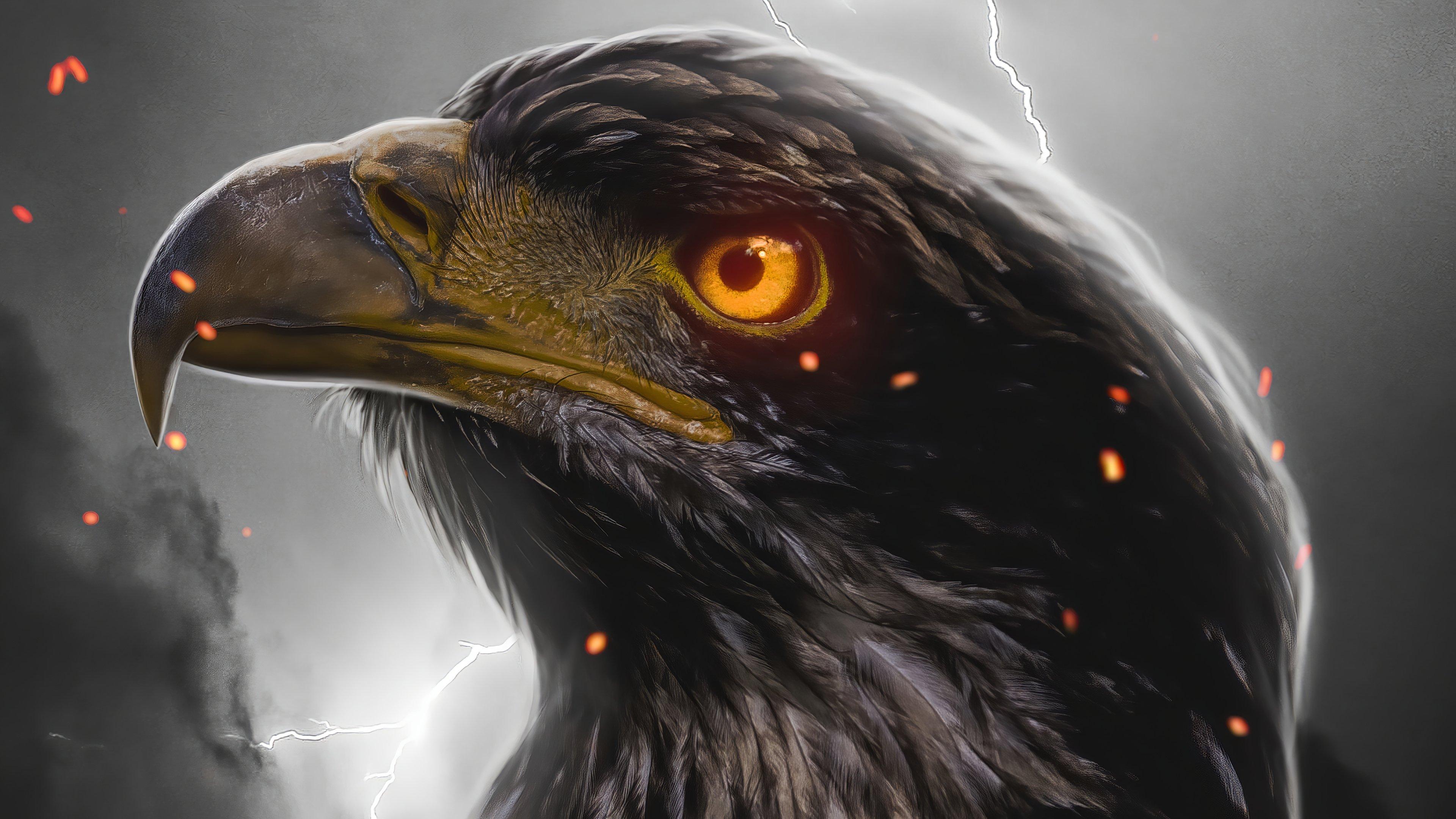 Wallpaper Eagle Digital Art