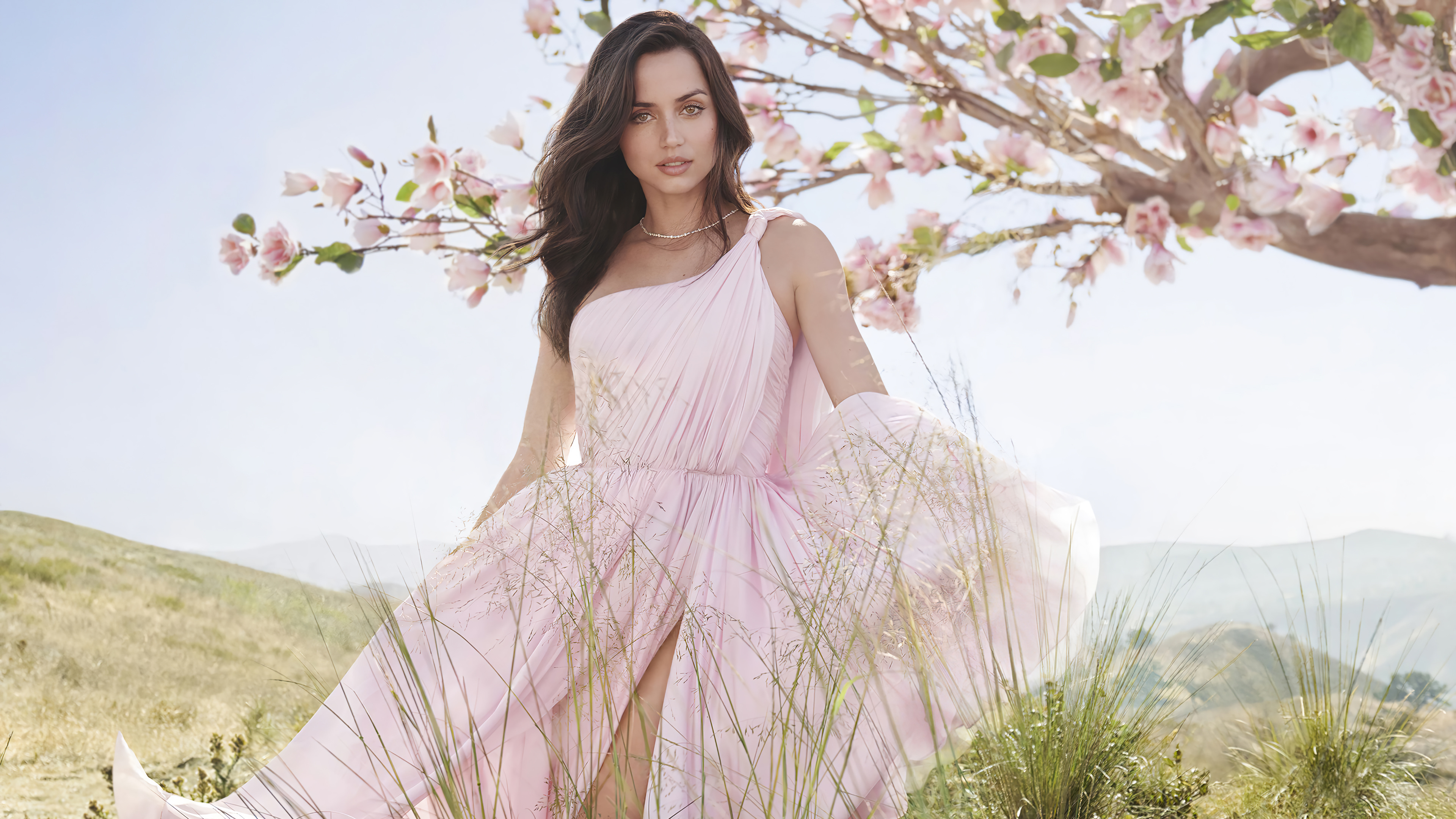 Wallpaper Ana de armas pink dress in the countryside
