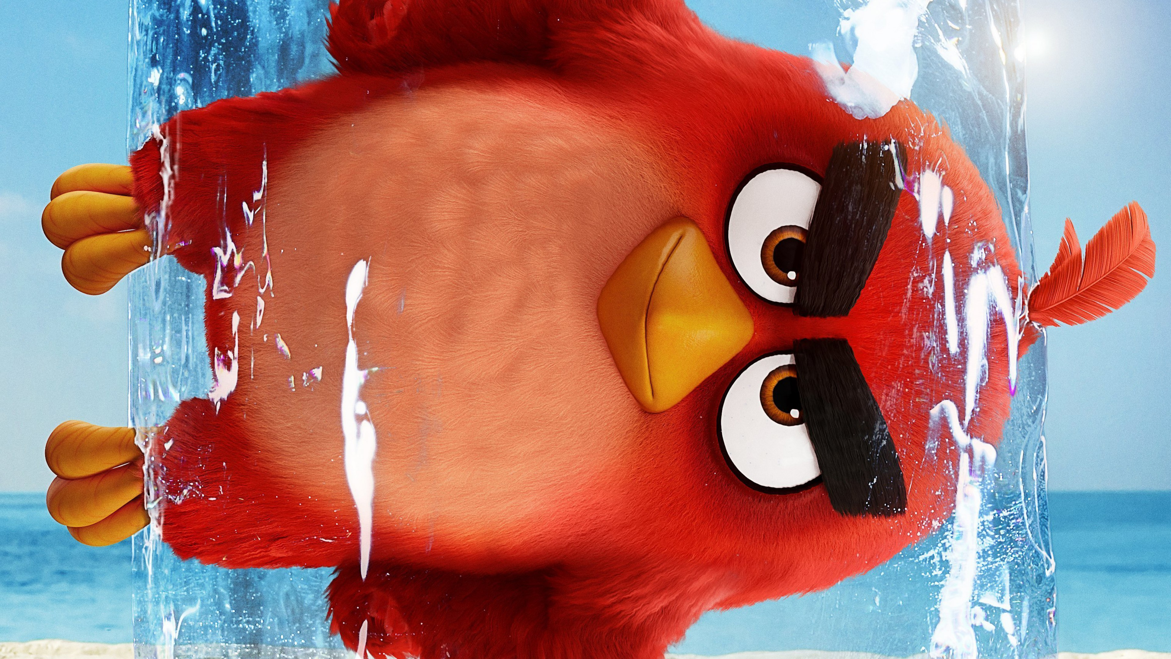 The Angry Birds Movie 2 Wallpaper 4k Ultra HD ID:3285
