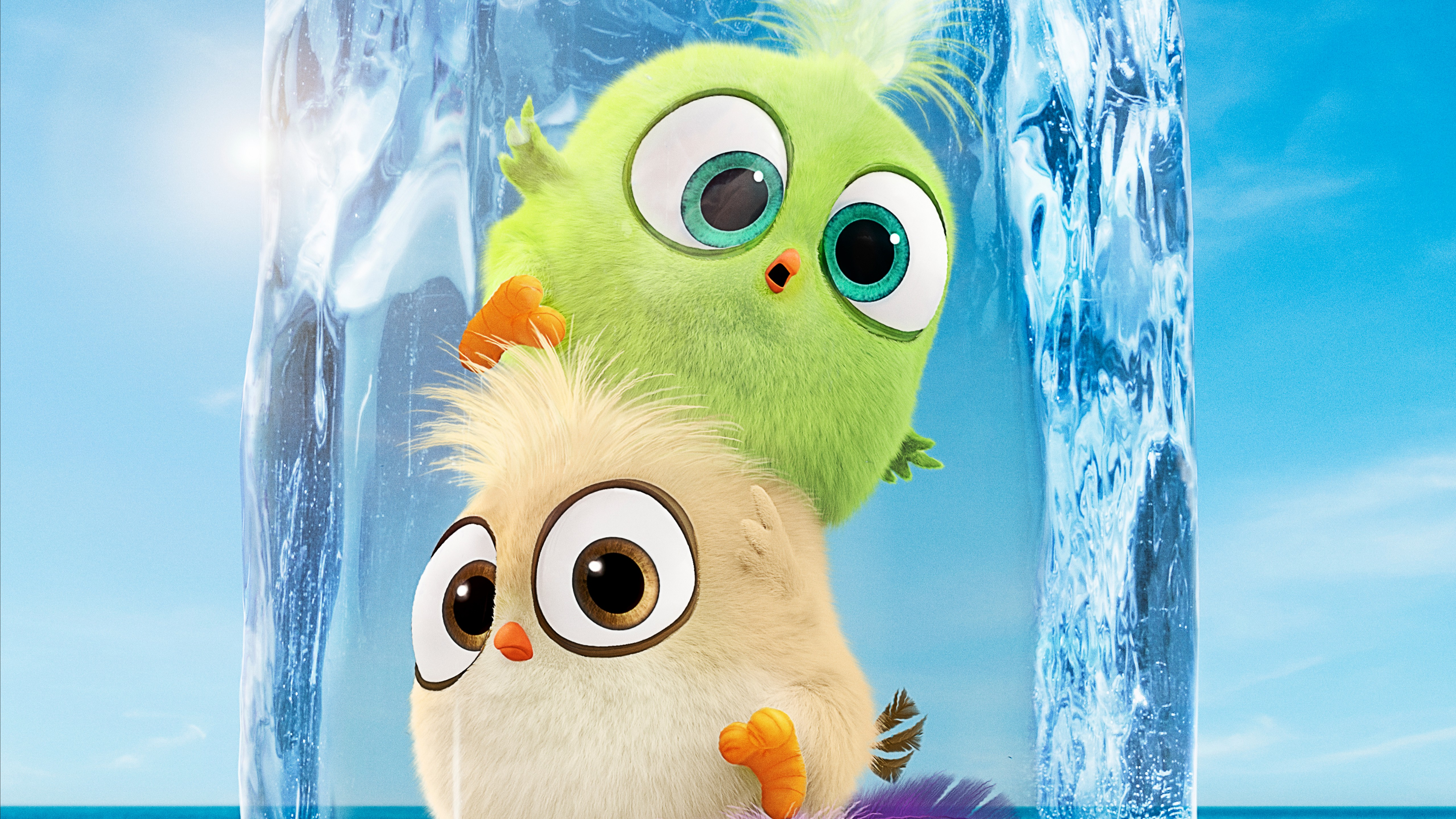 The Angry Birds Movie 2 Wallpaper 5k Ultra HD ID:3288
