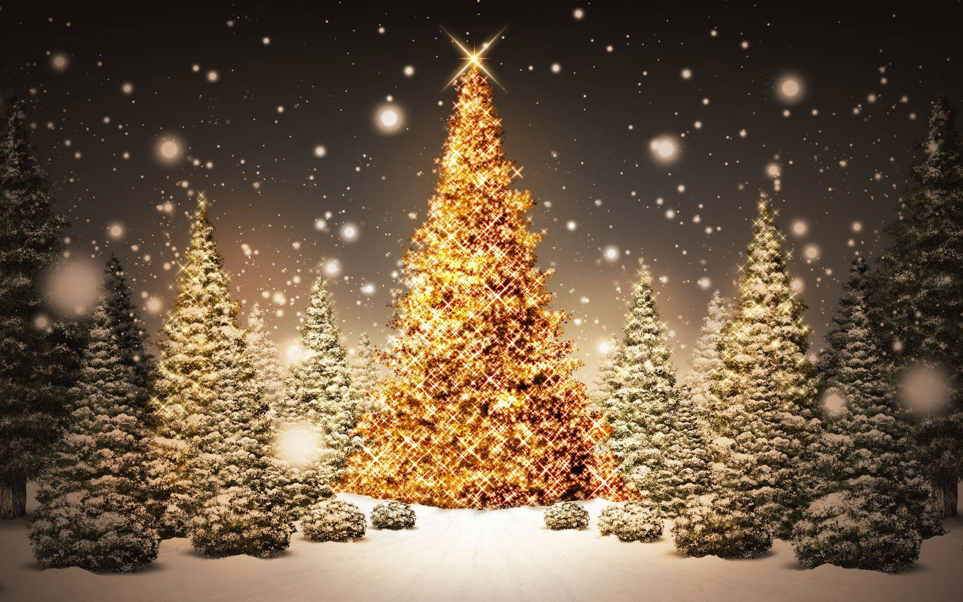 Wallpaper Christmas trees with flashes of golden lights