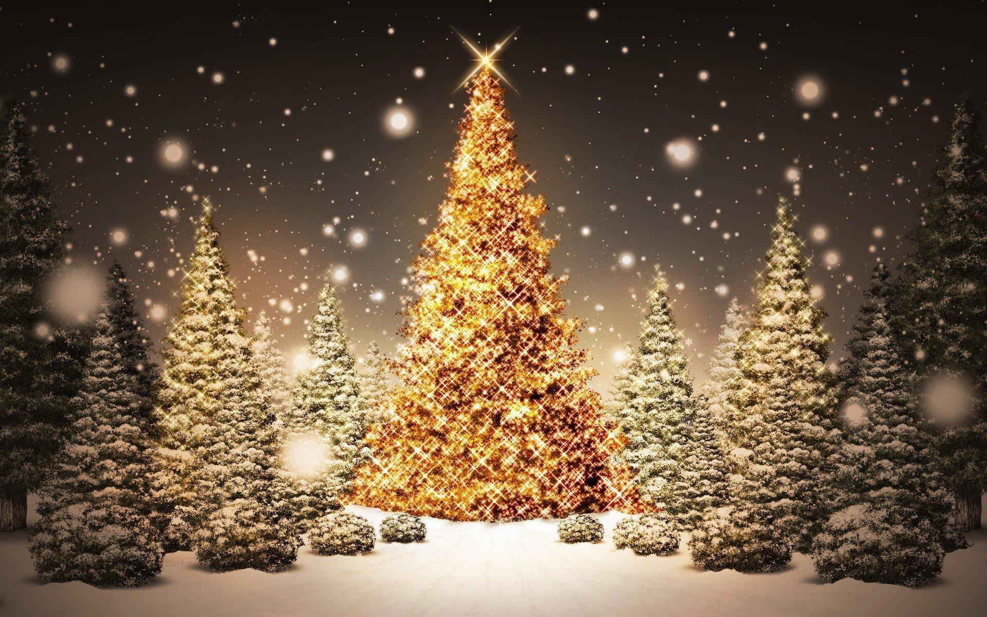 Fondo de pantalla de Arboles de Navidad con destellos de luces doradas Imágenes
