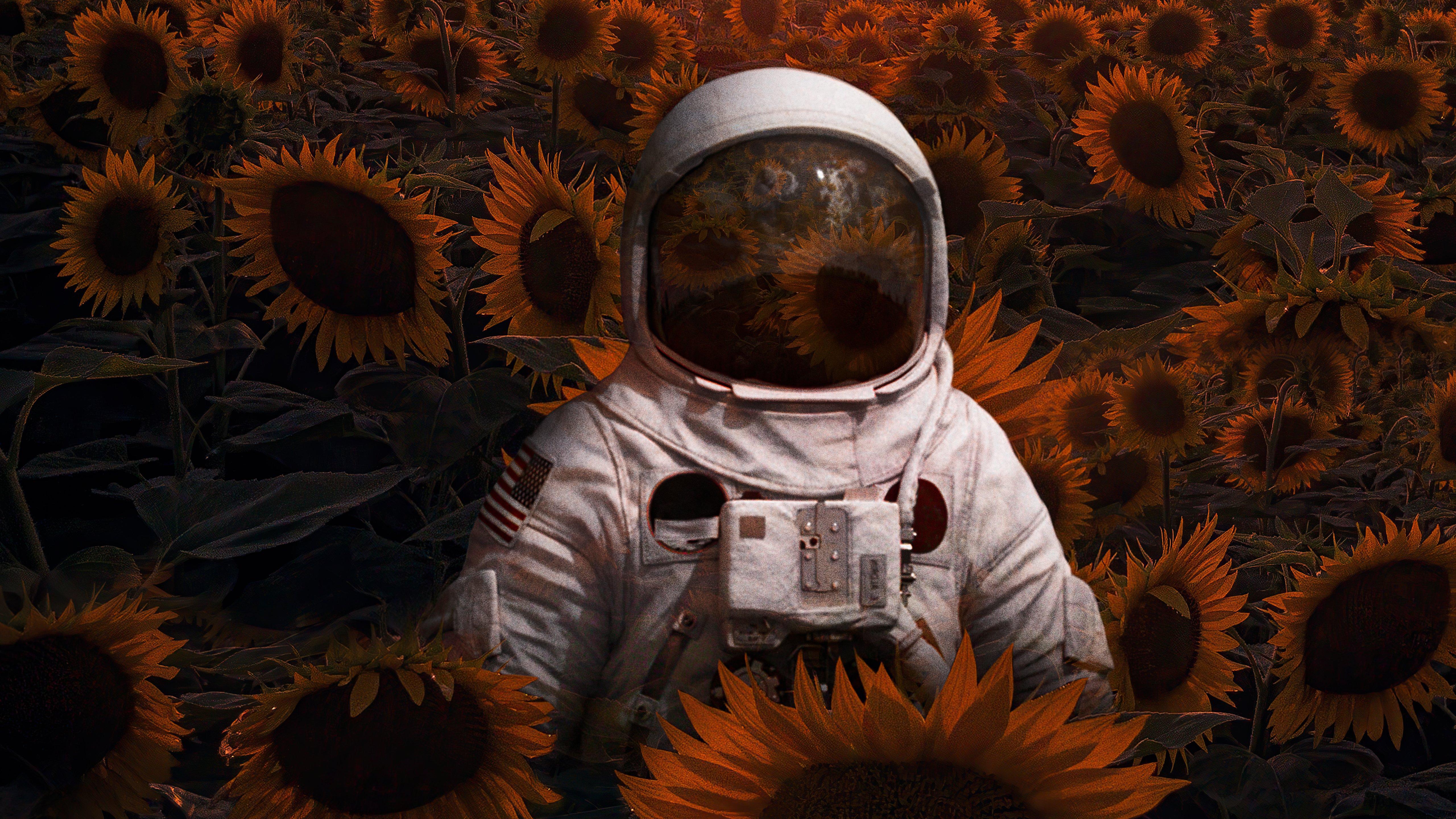 Wallpaper Astronaut in sunflower field