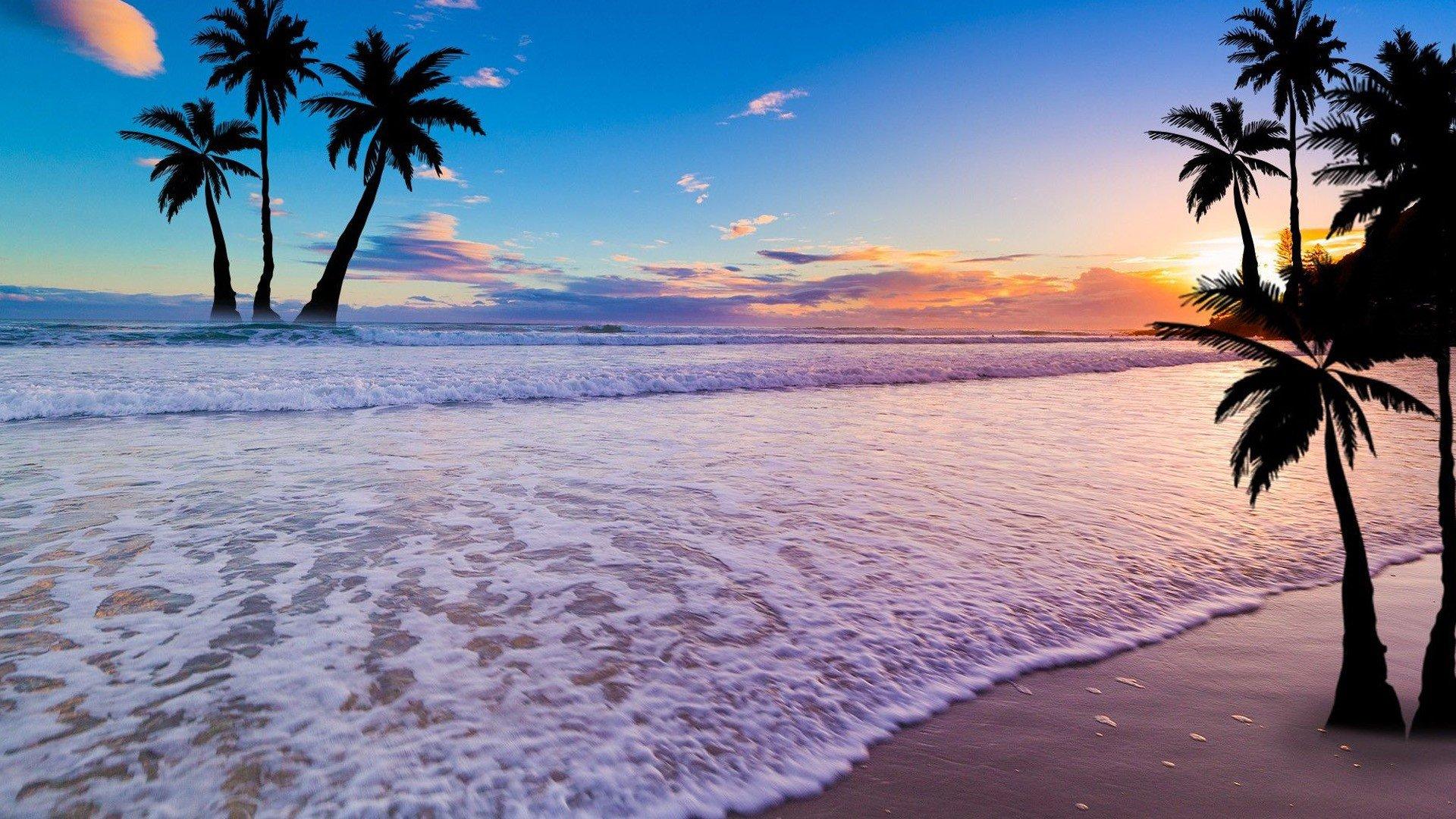Fondos de pantalla Atardecer en la playa con palmas