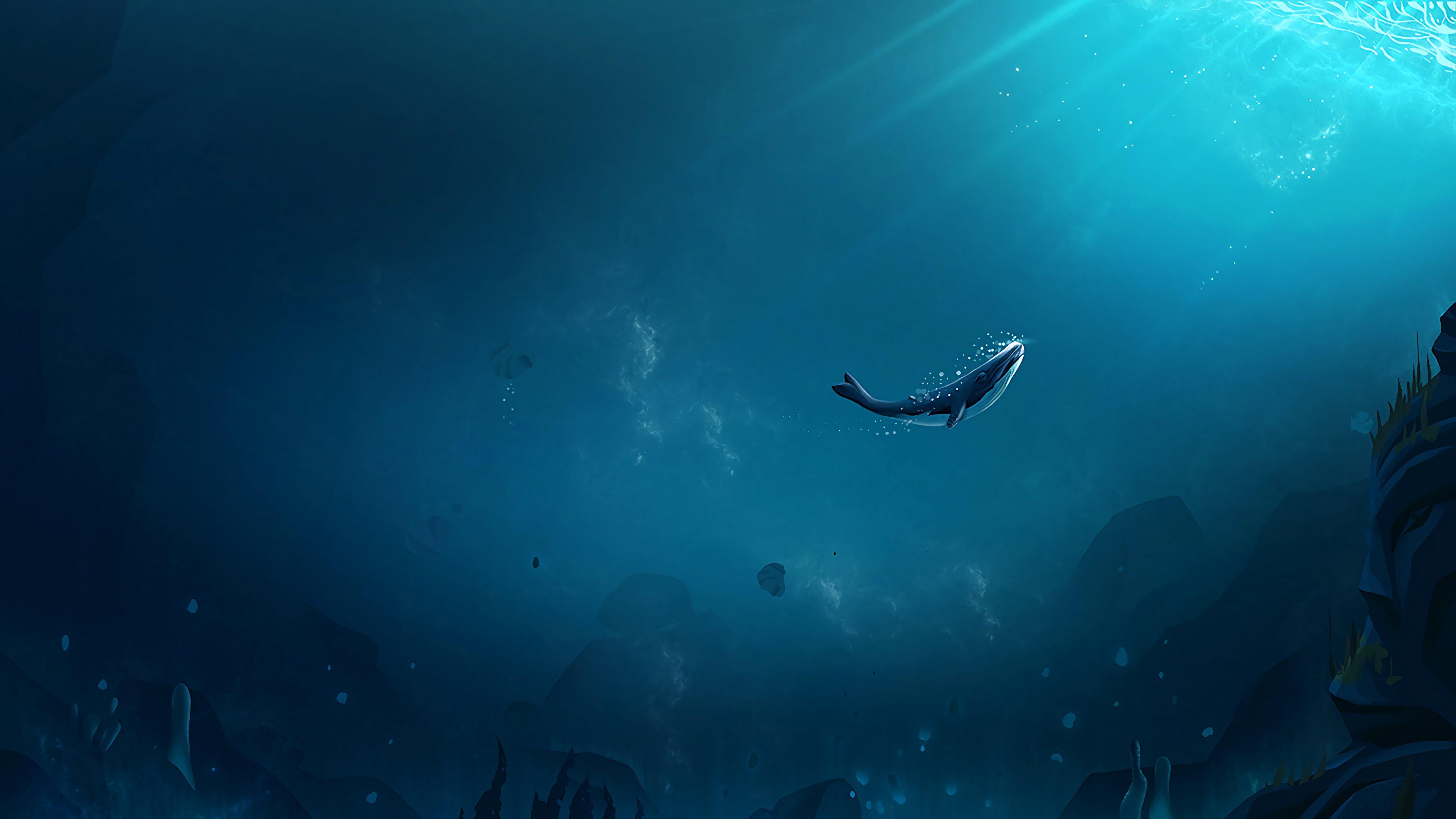 Fondos de pantalla Ballena en el océano