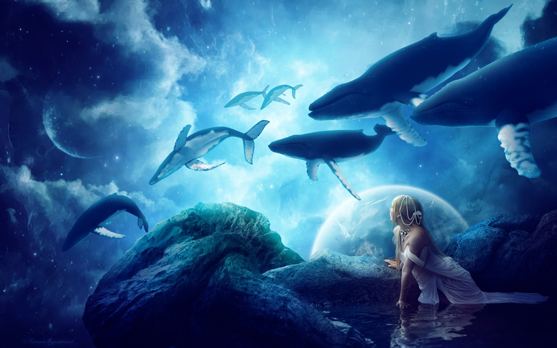 Wallpaper Whales in a fantastic world