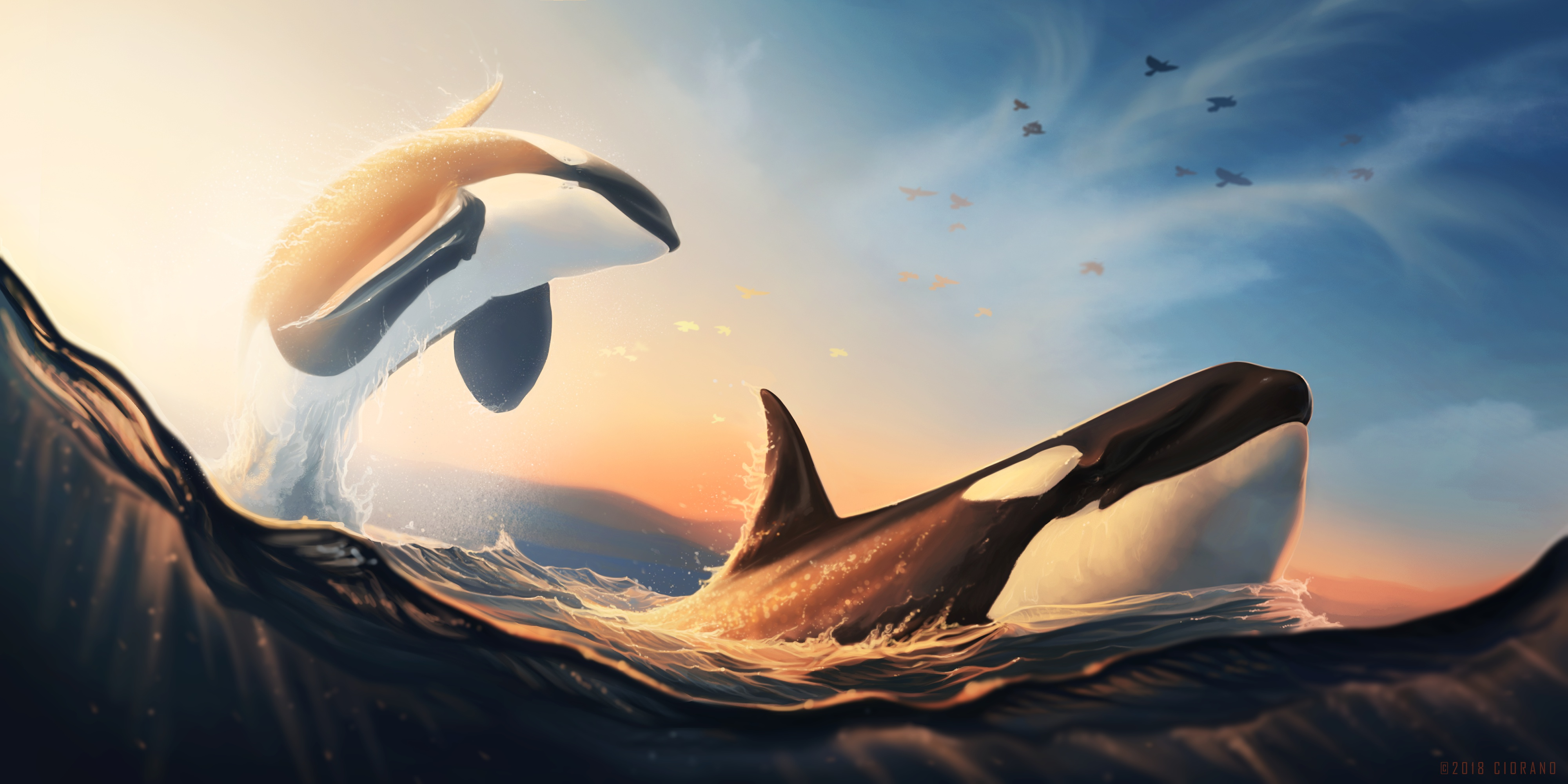 Wallpaper Whales jumping out of the water
