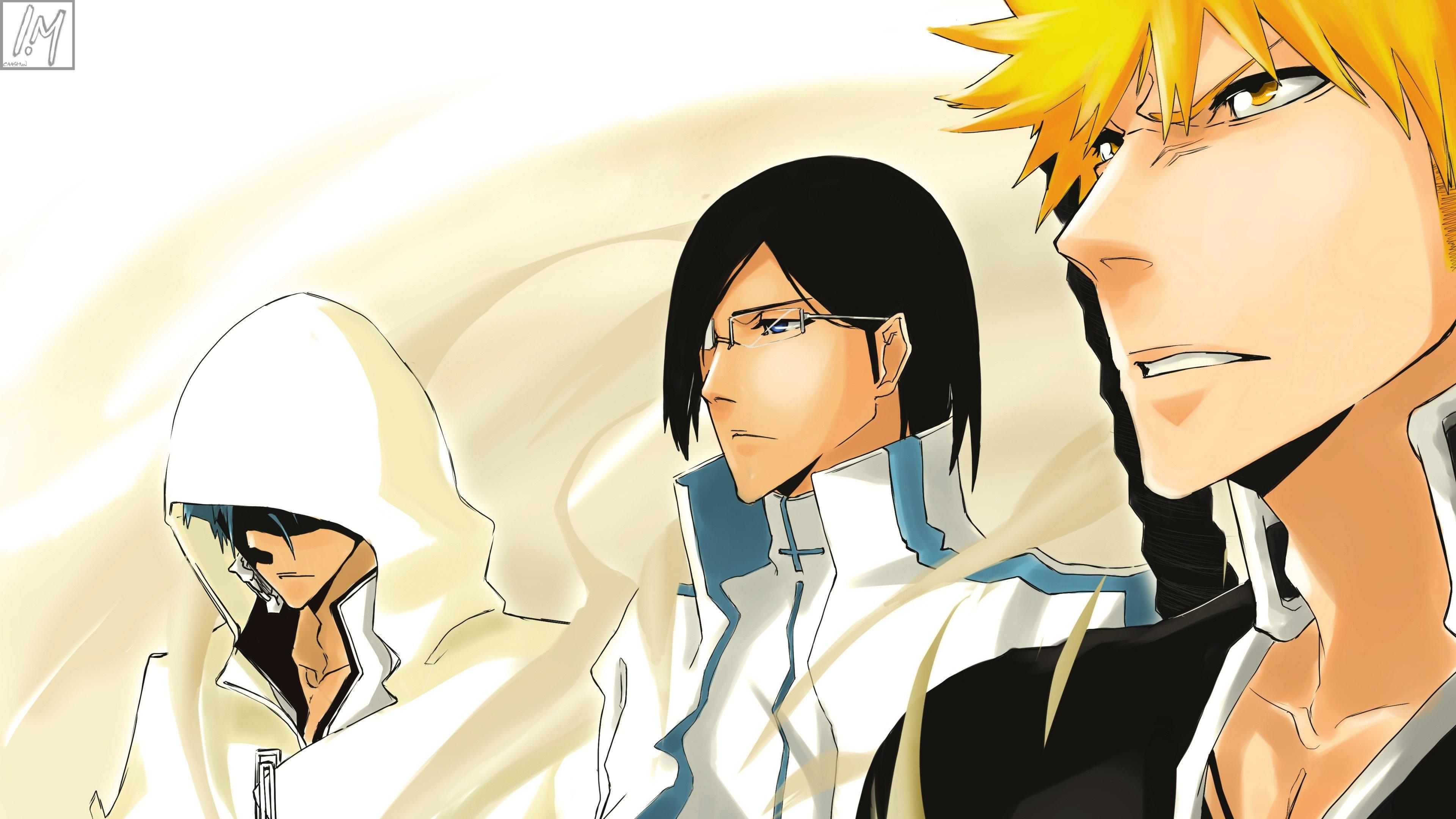 Fondos de pantalla Anime Bleach Ichigo, Kurosaki Shinigami y Grimmjow Jaegerjaquez