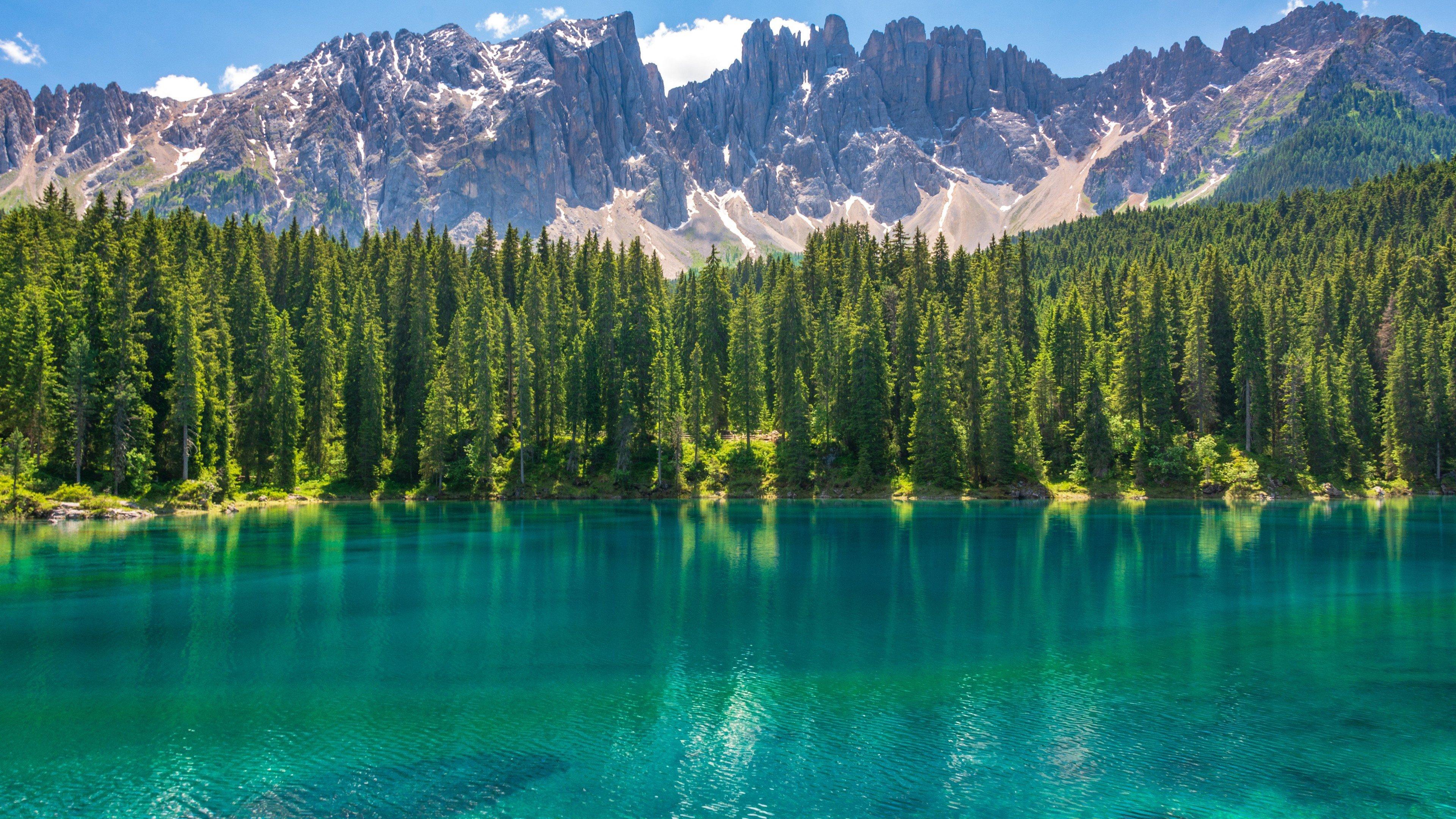Fondos de pantalla Bosque con lago azulado y montañas