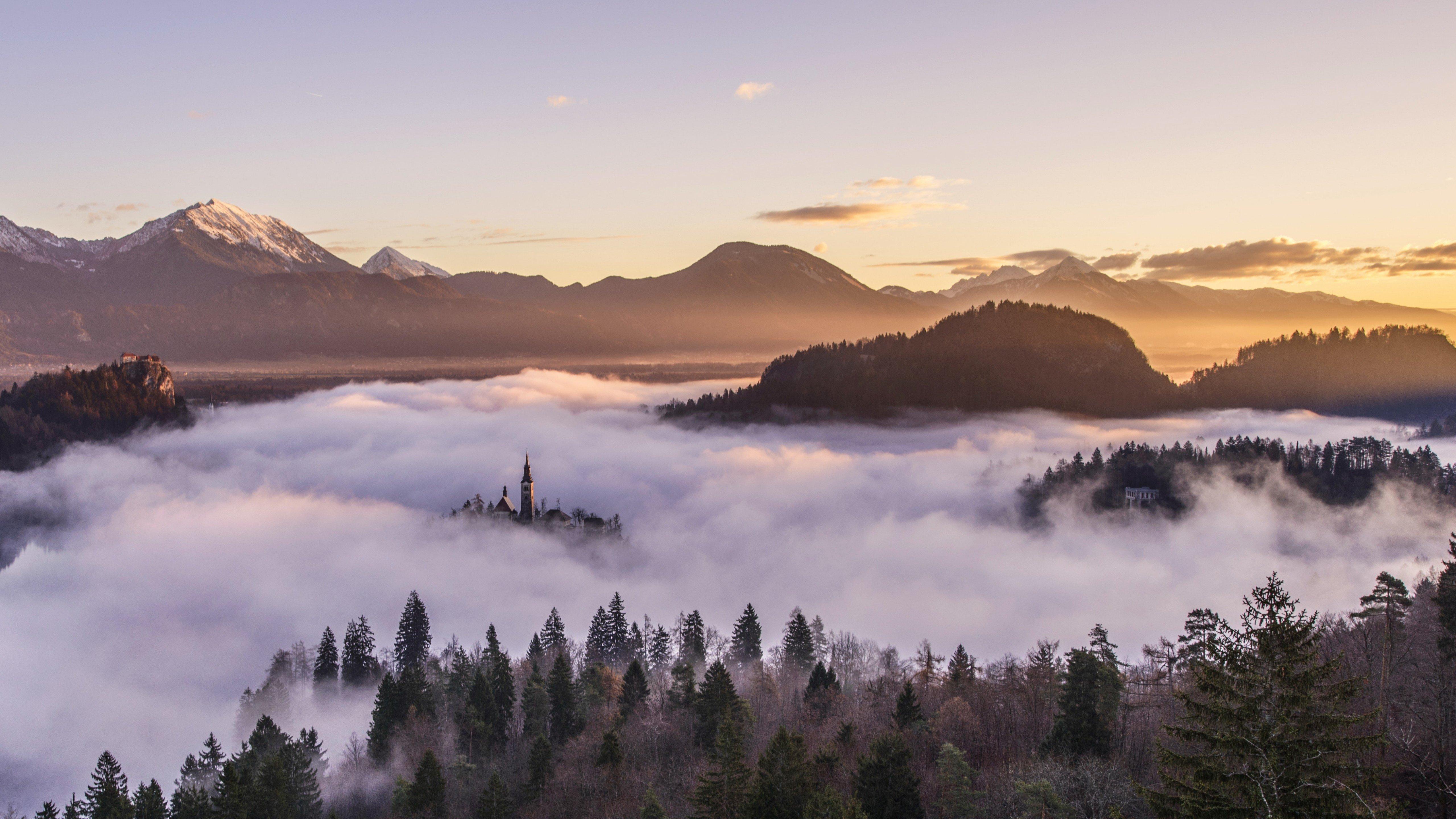 Fondos de pantalla Bosque y montañas entre la niebla