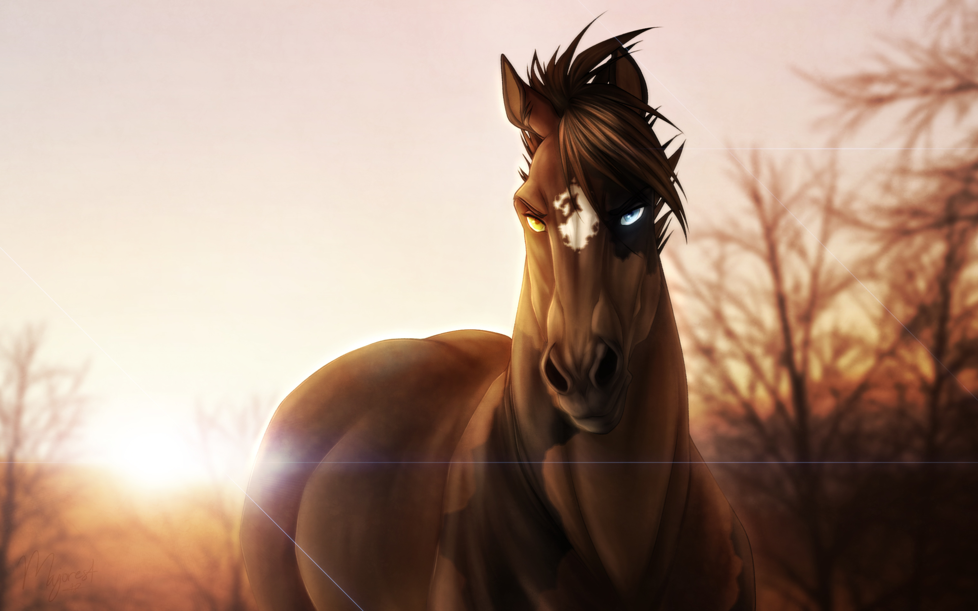 Wallpaper Horse with intense stare