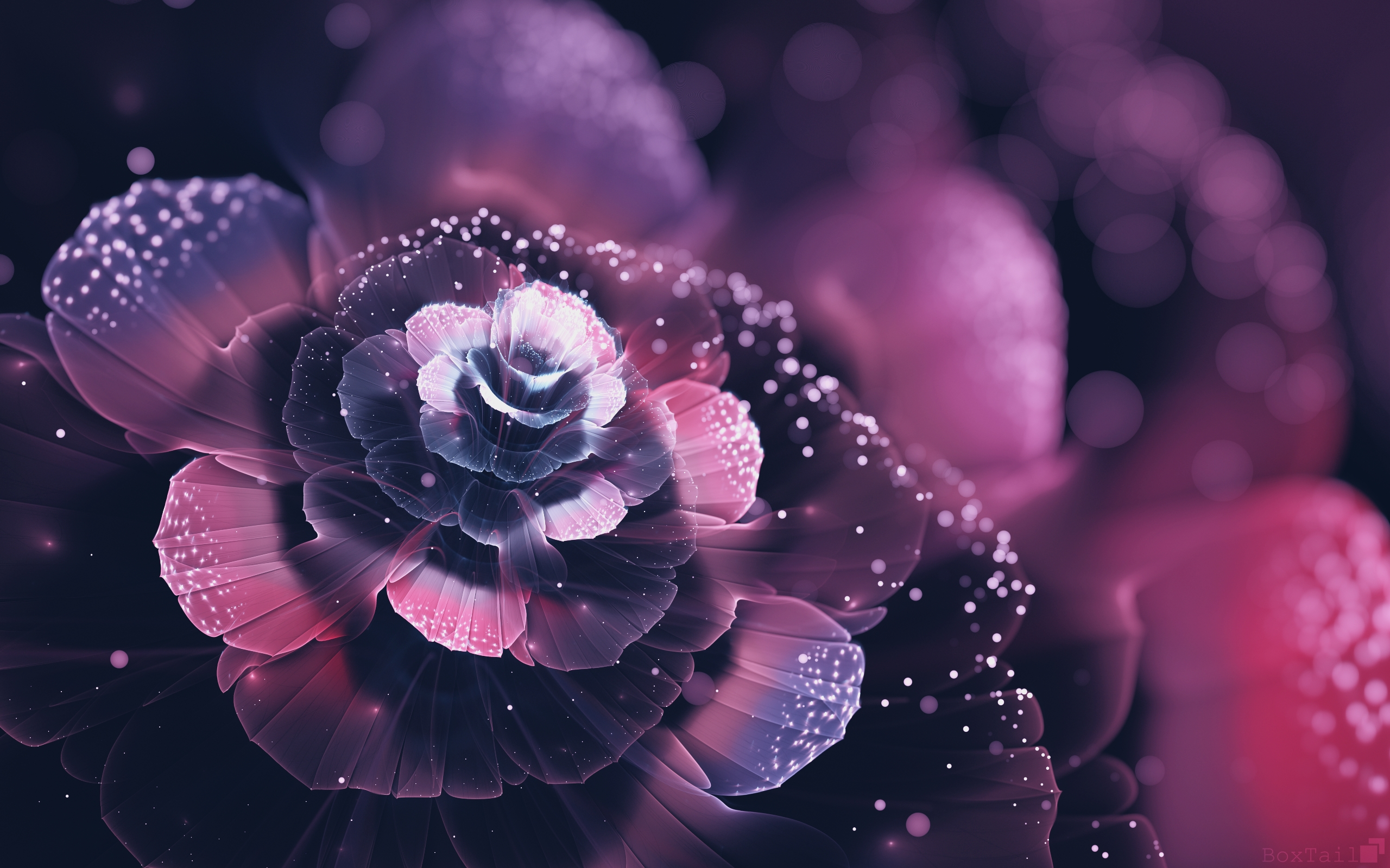 Wallpaper Design of a flower abstract