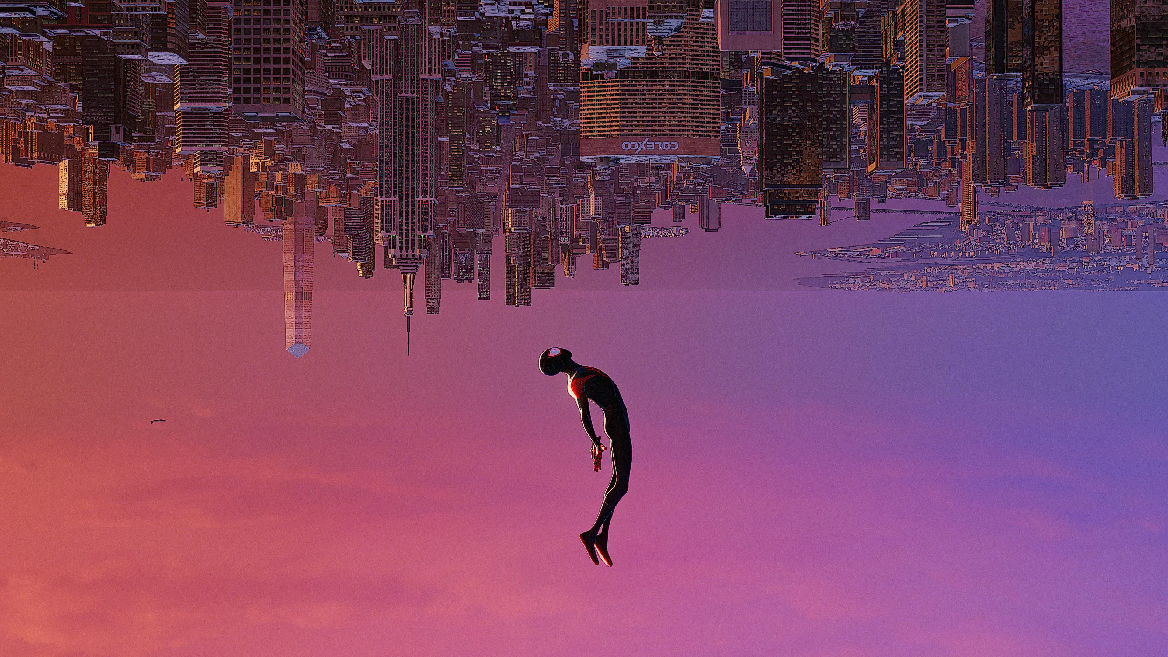 Wallpaper Spiderman upside down
