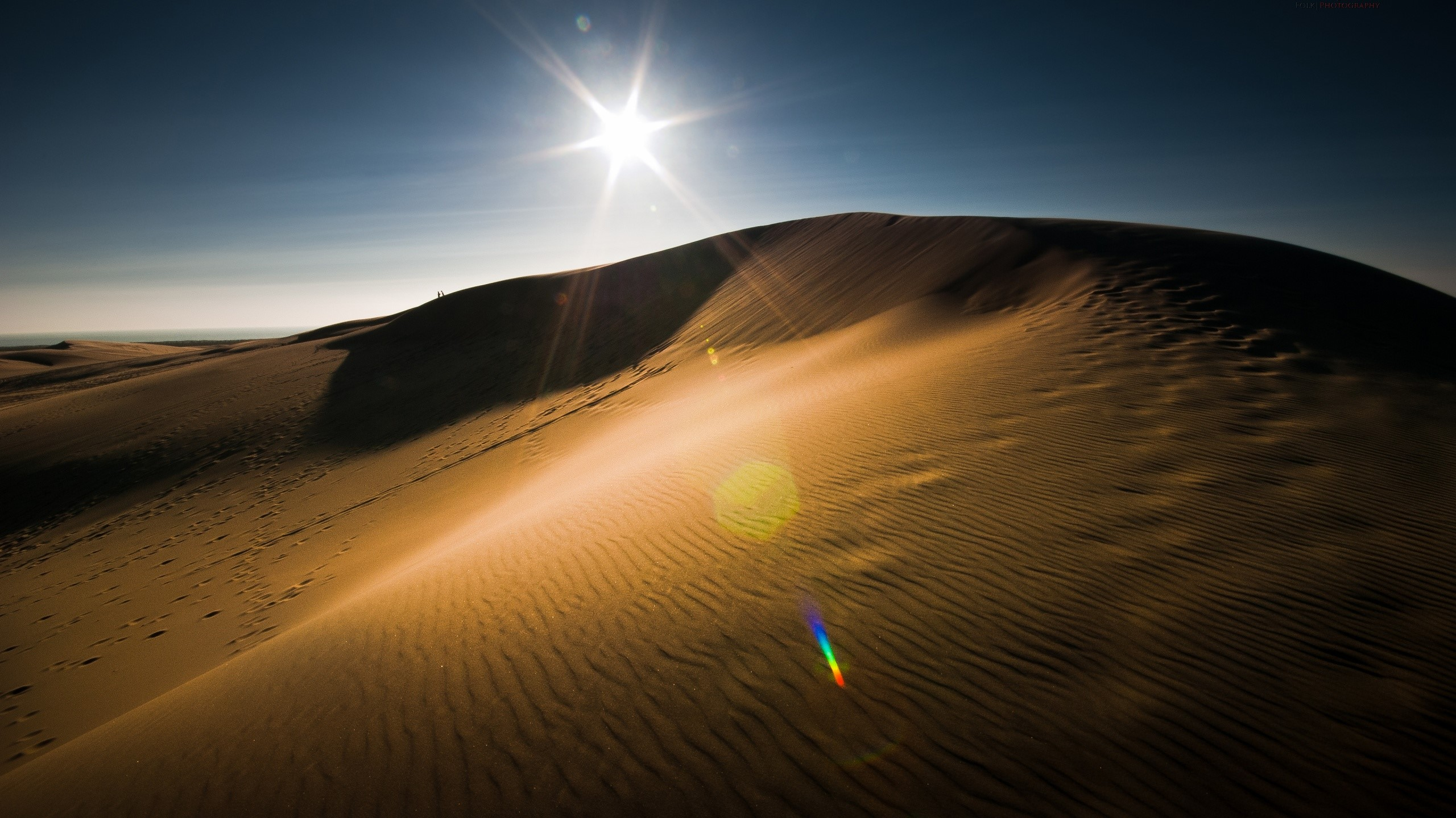 Wallpaper The sun in the desert