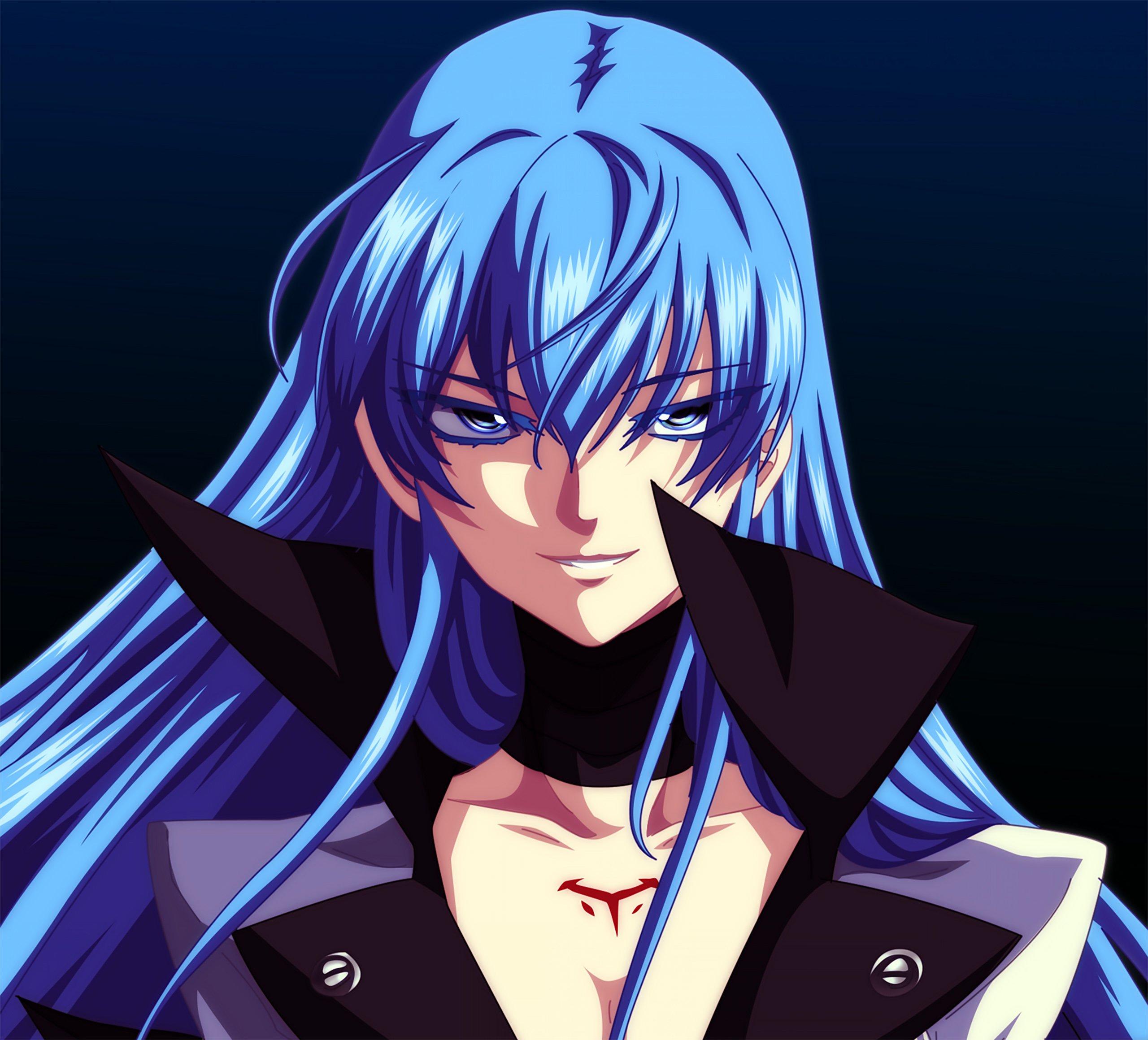 Fondos de pantalla Anime Esdeath de Akame ga Kill!