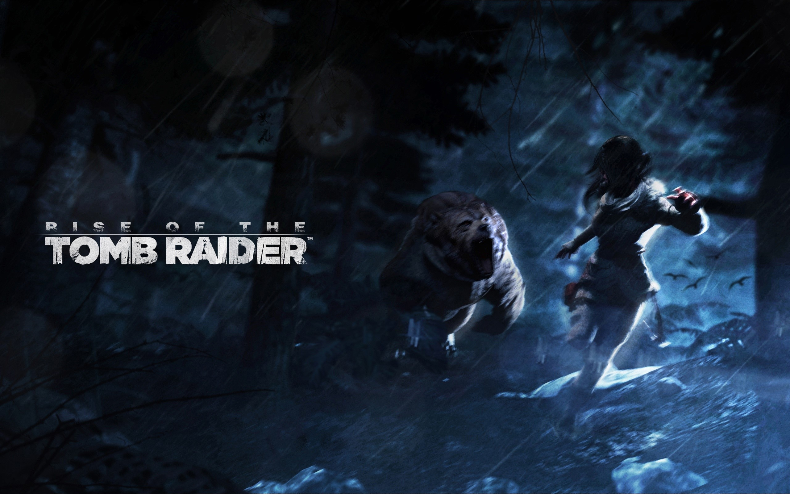 Wallpaper Fanart by Rise of Tomb Raider
