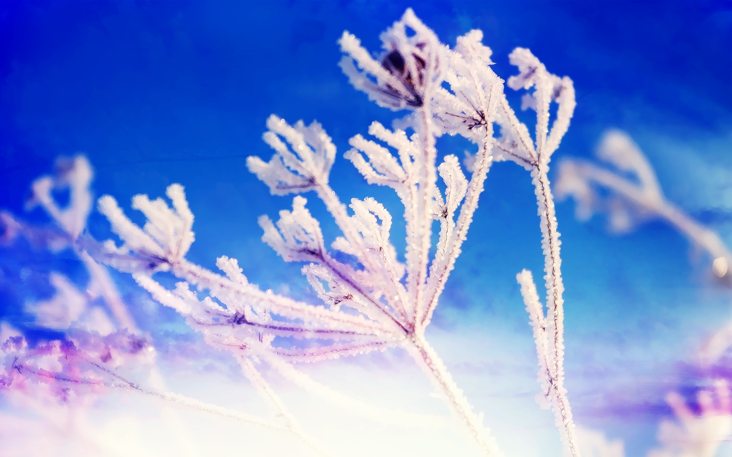Wallpaper Winter Fantasy