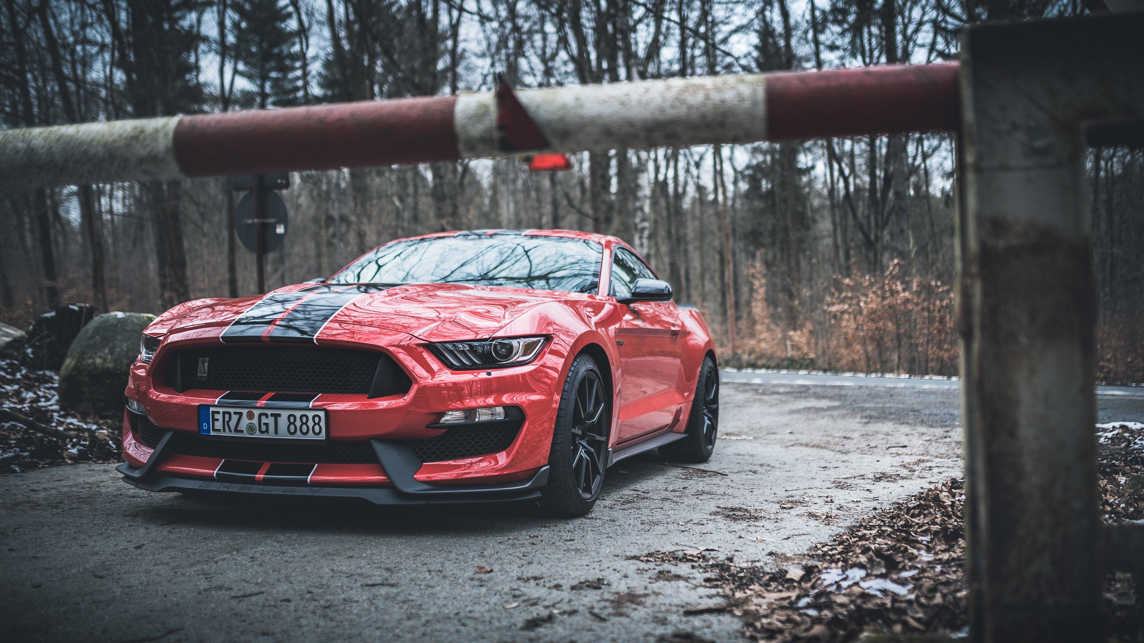 Fondos de pantalla Ford Mustang Shelby GT350 rojo con rayas negras