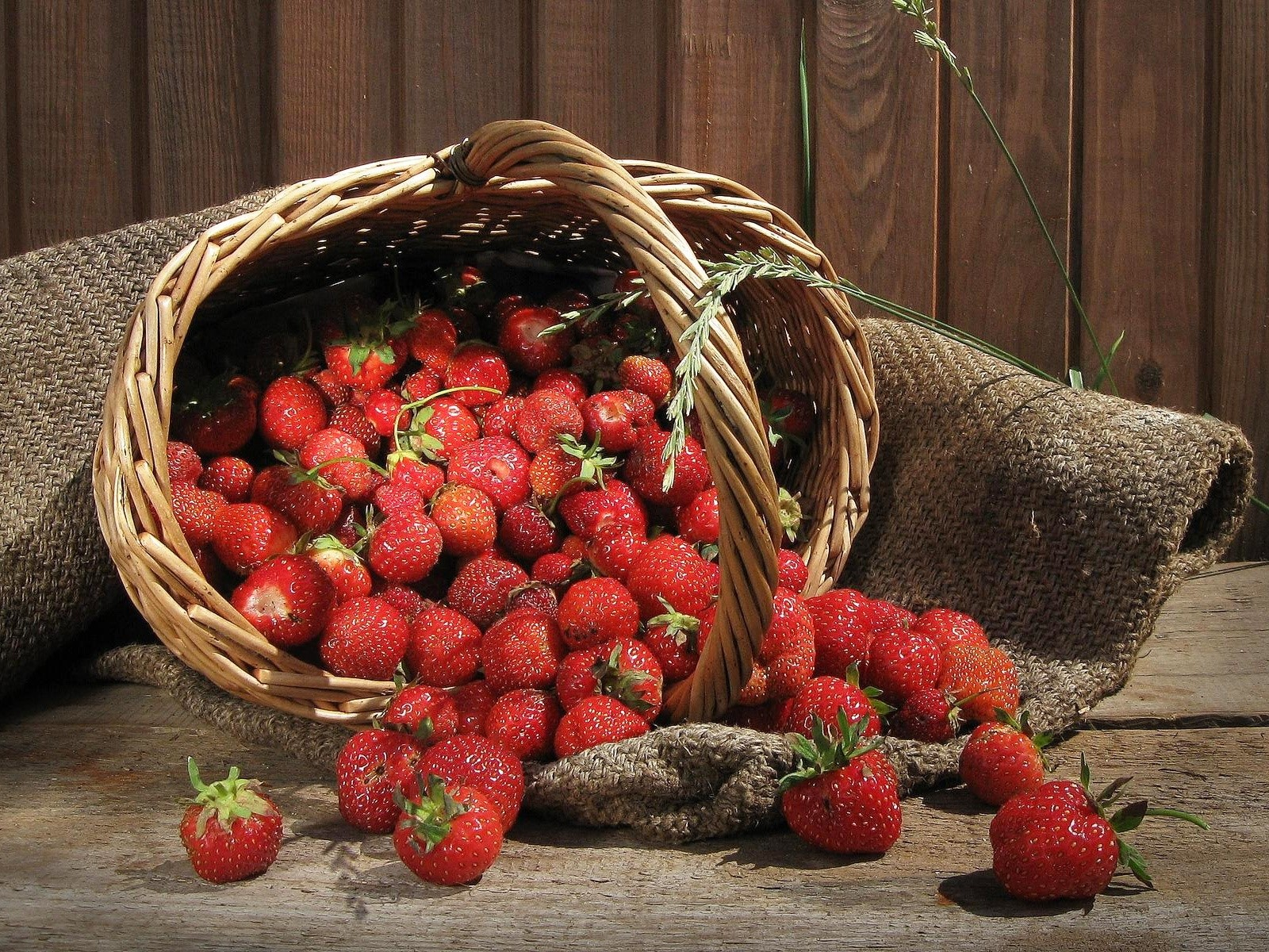 Wallpaper Strawberries in a basket