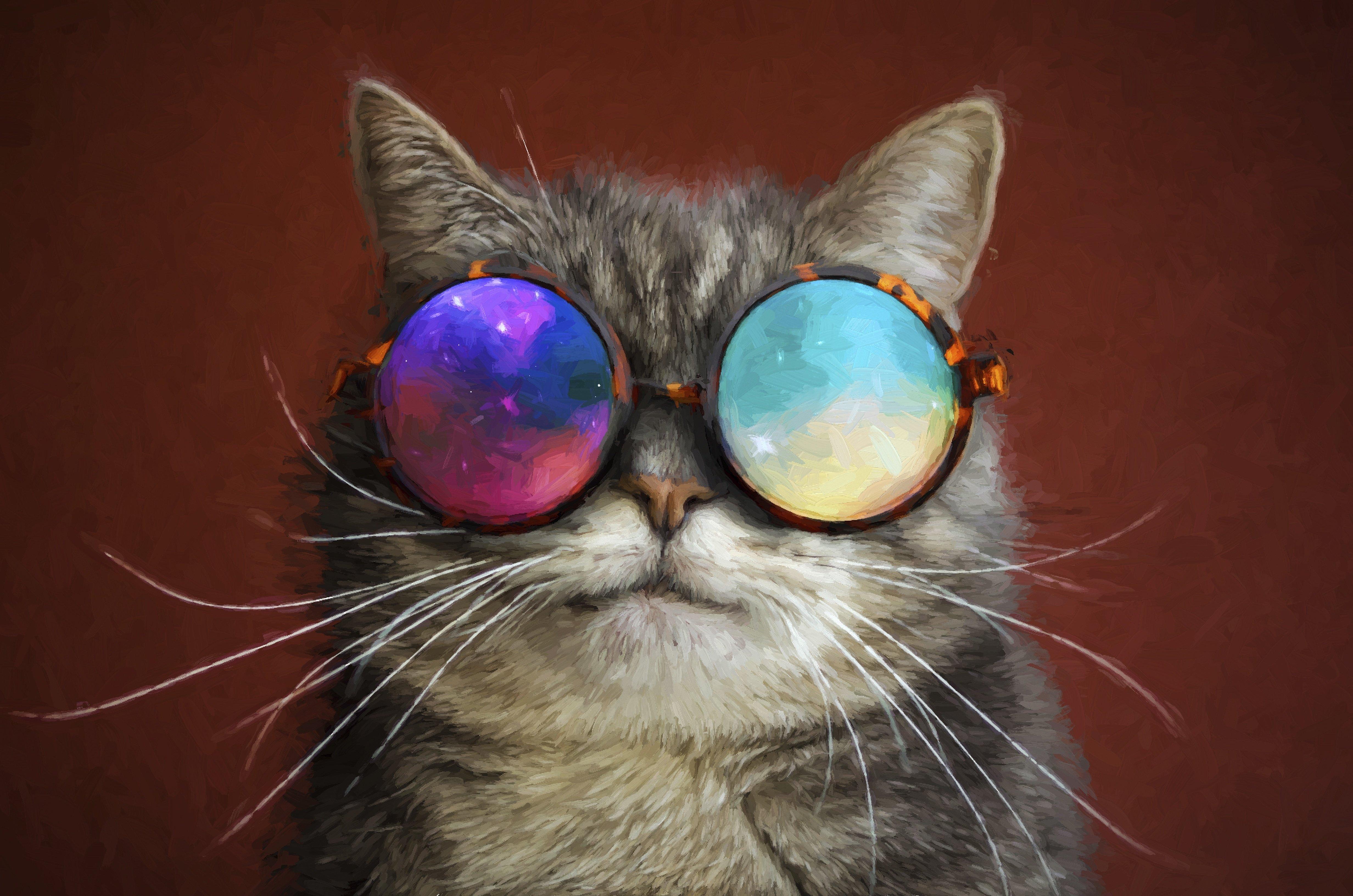 Fondos de pantalla Gato con lentes de galaxia