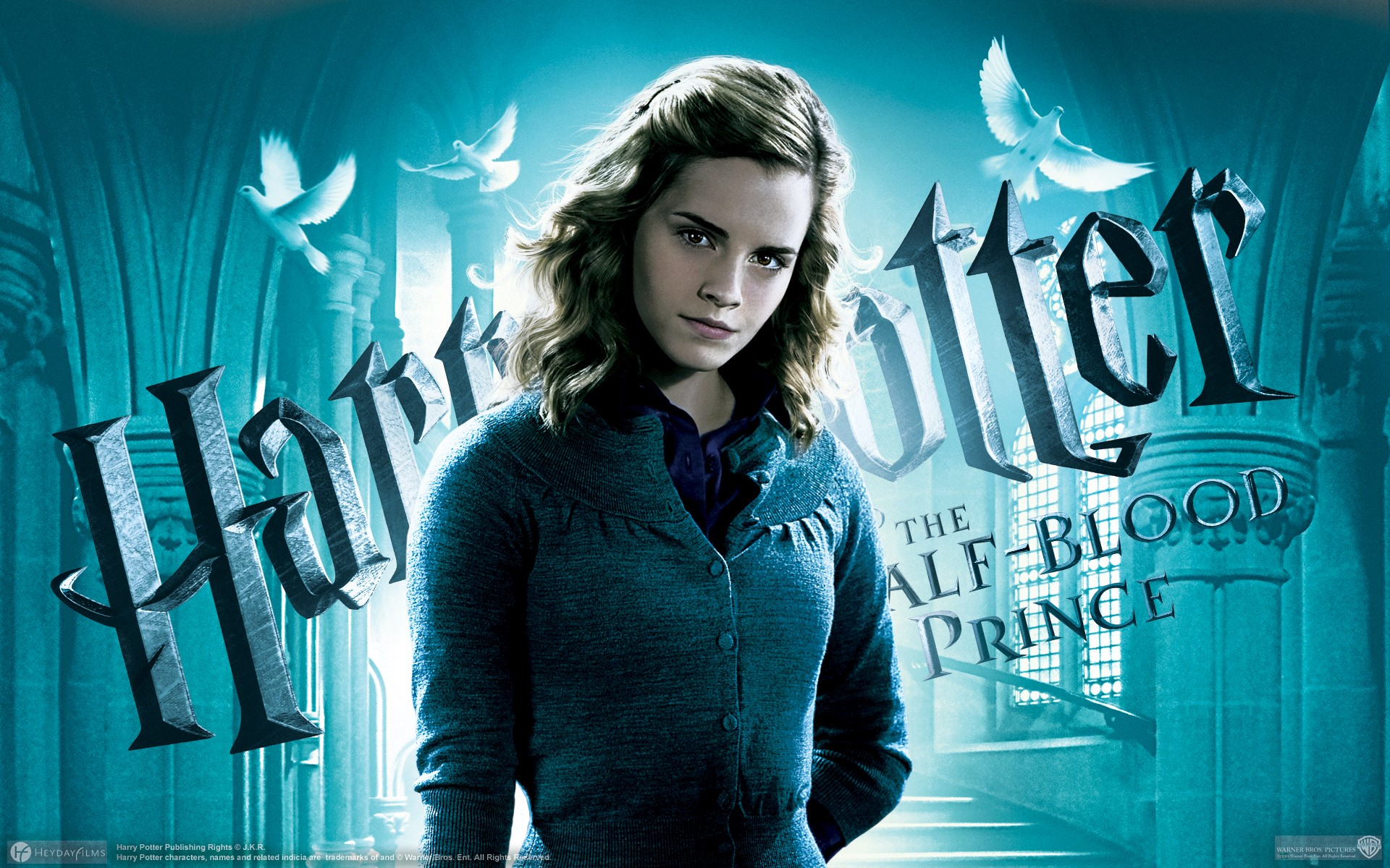 Wallpaper Hermione Granger in Harry Potter and the mystery of the prince