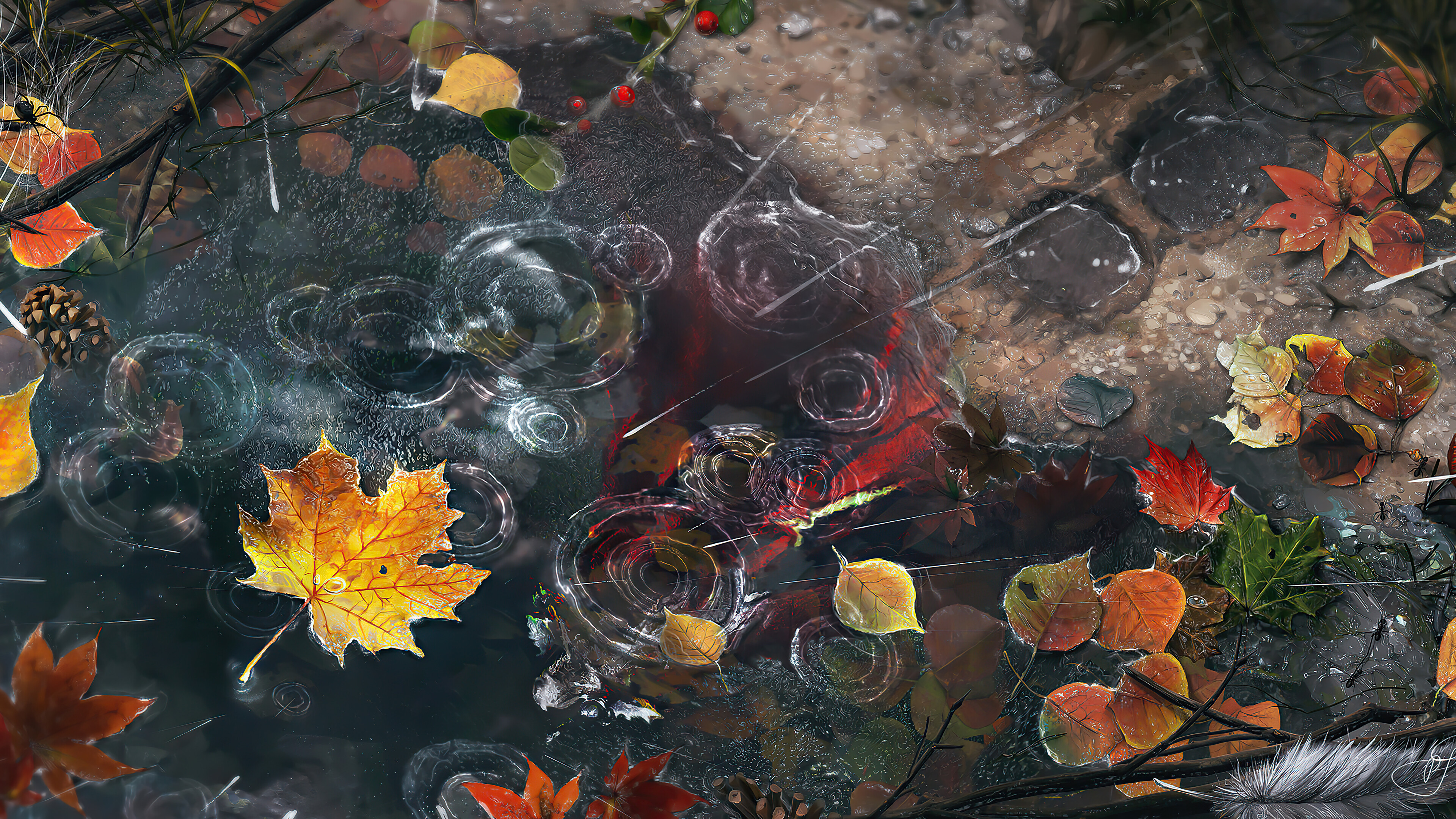 Wallpaper Autumn leaves with rain drops