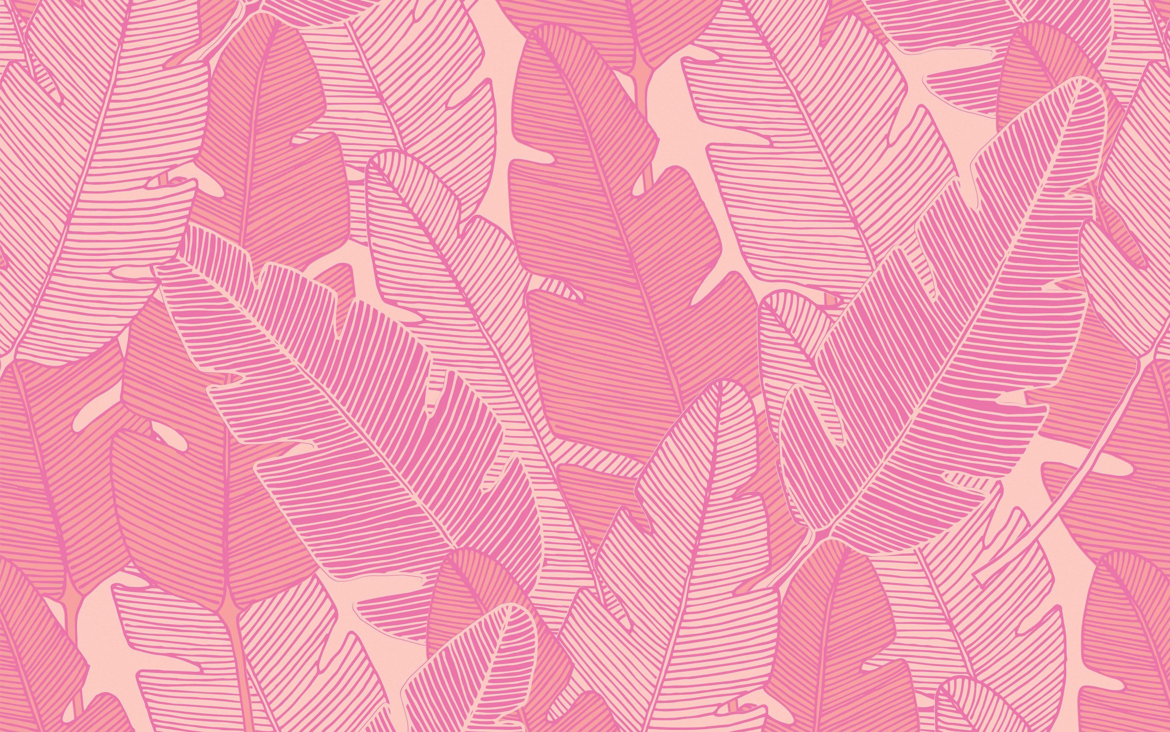Fondos de pantalla Hojas rosa