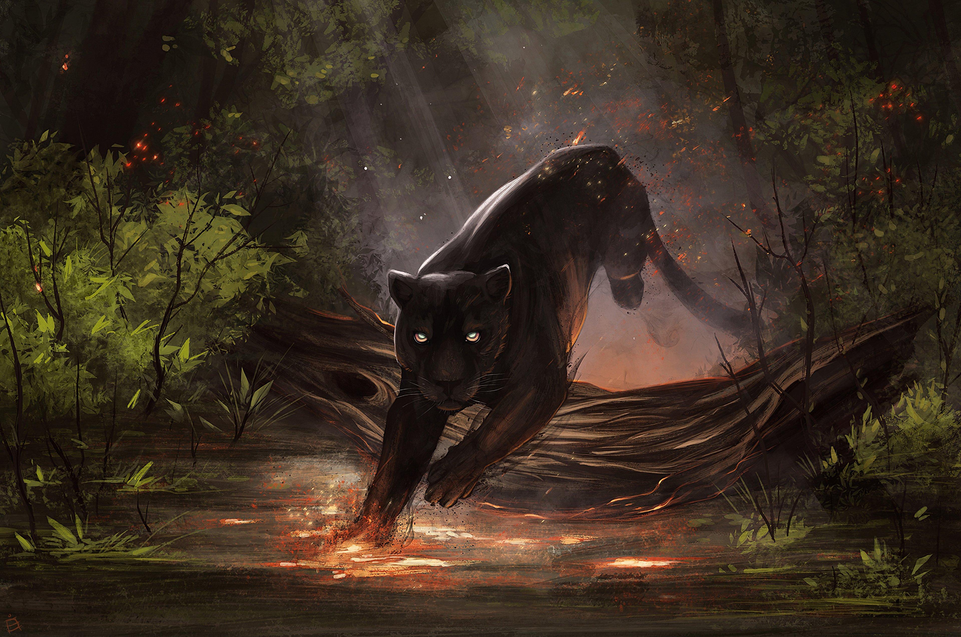 Fondos de pantalla Ilustración Jaguar Negro