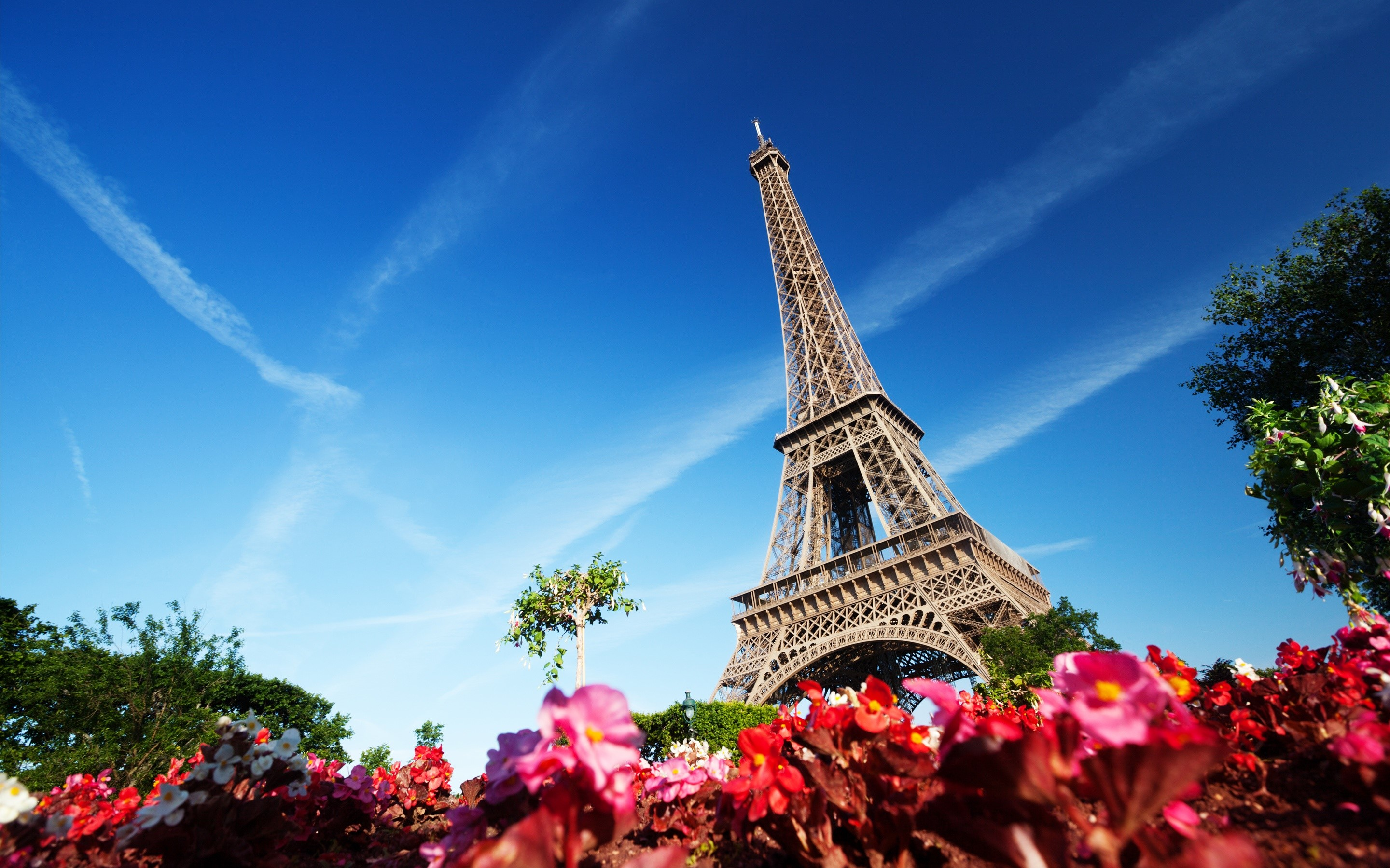 Wallpaper The Eiffel tower with flowers
