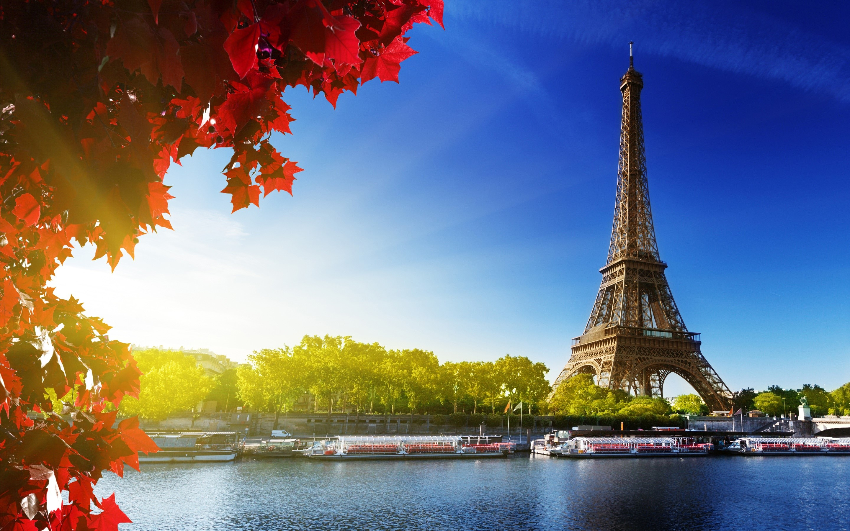Wallpaper The Eiffel Tower and the sun