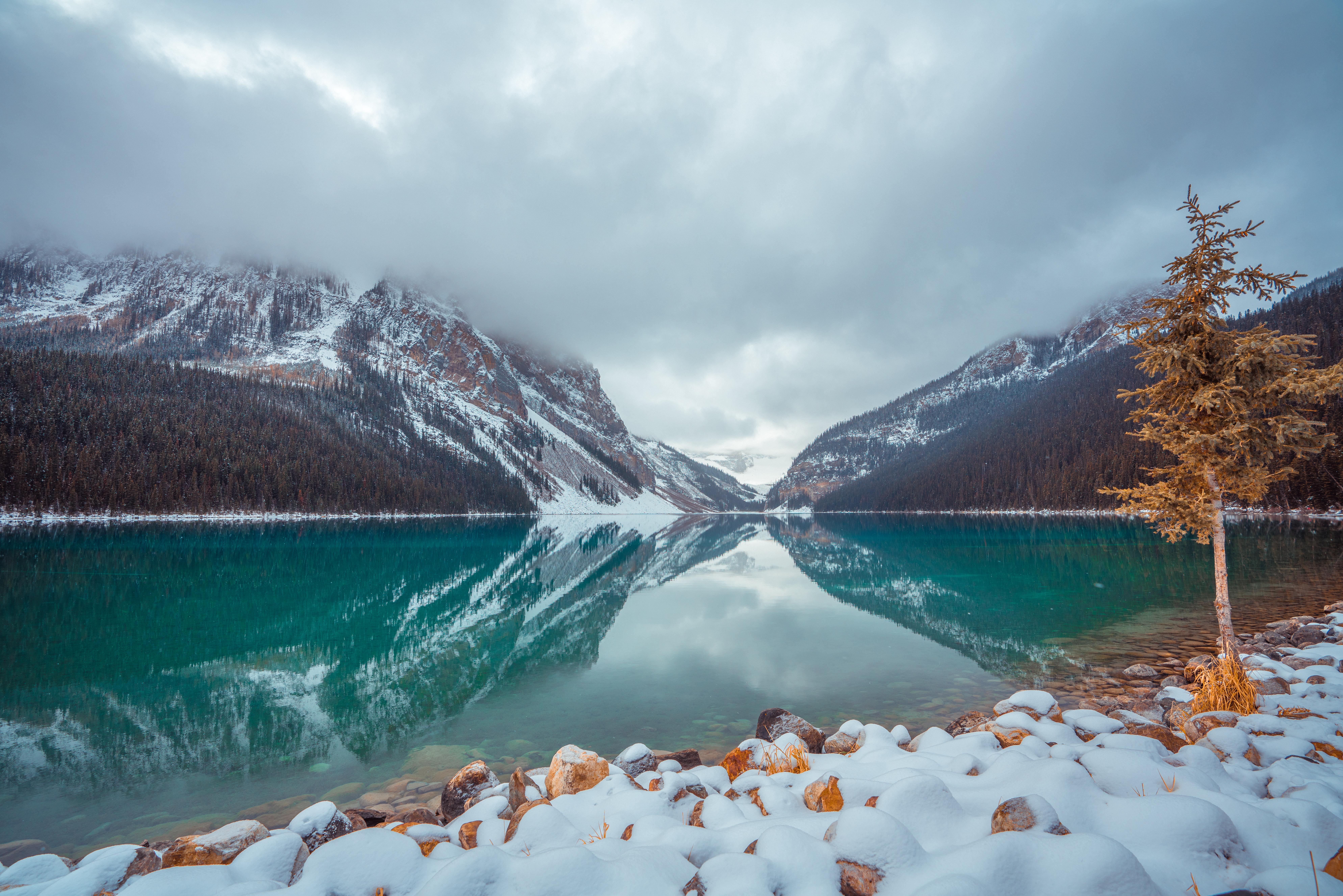Fondos de pantalla Lago con niebla Louise en Canada
