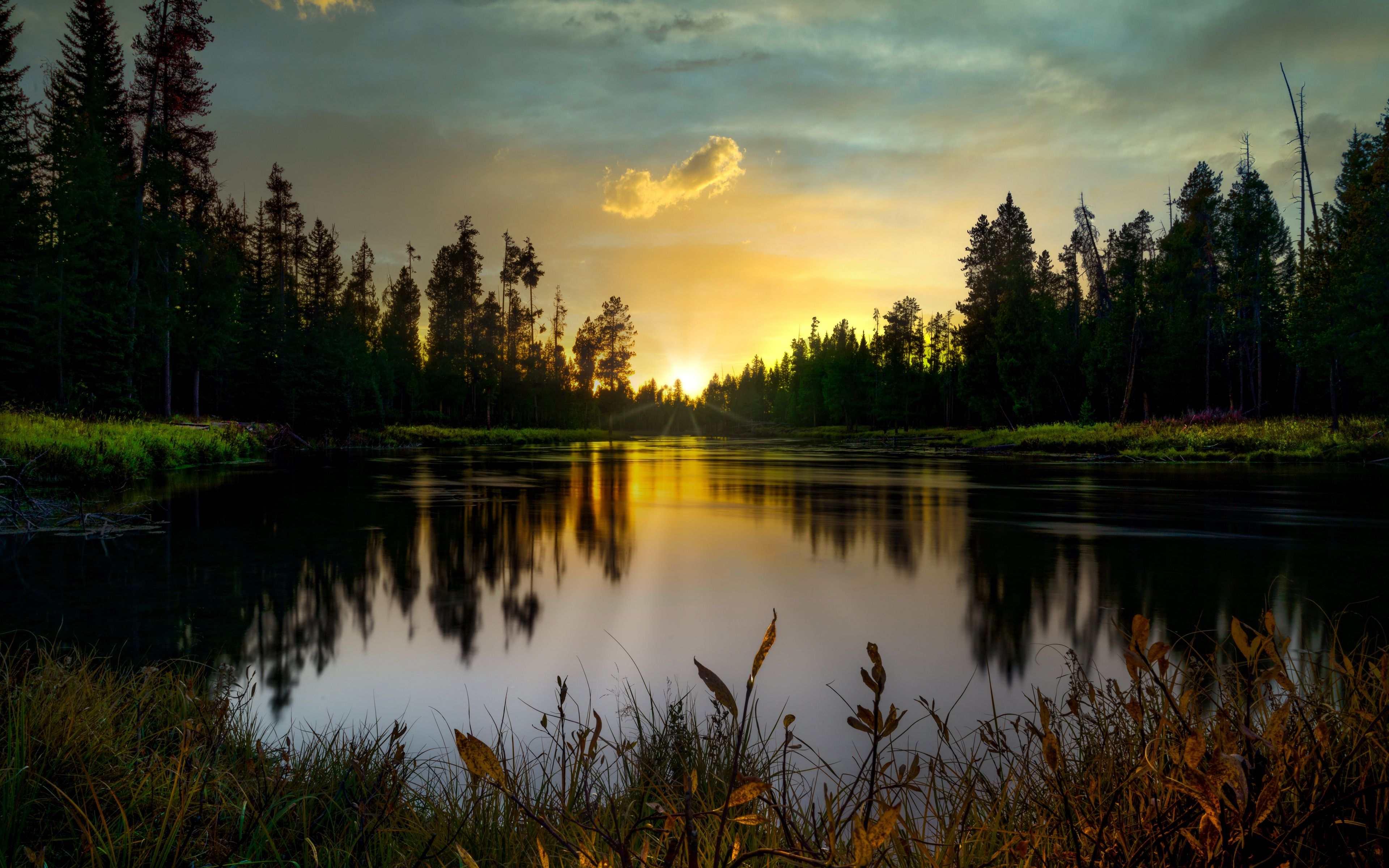 Fondos de pantalla Lago en bosque al atardecer