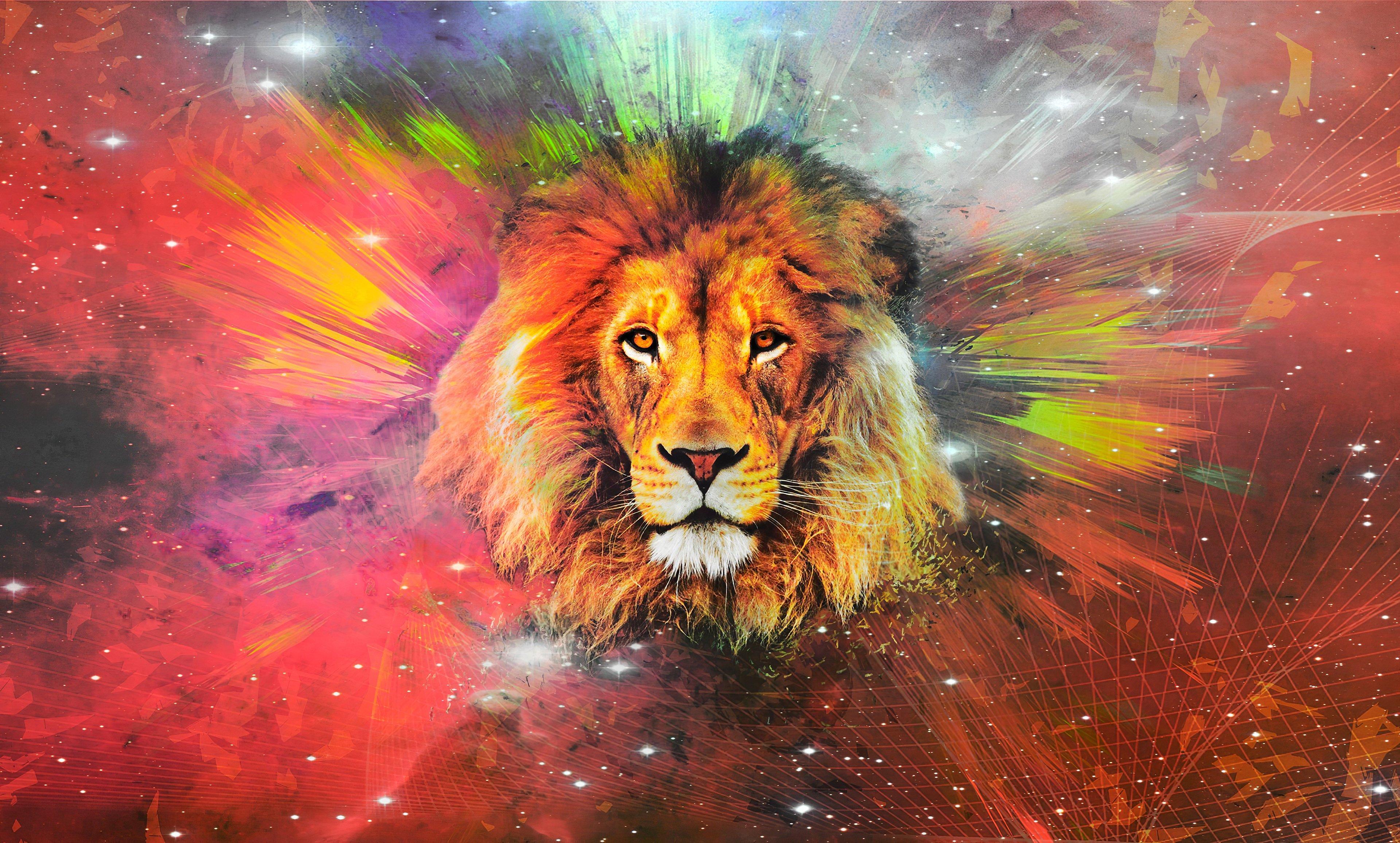 Wallpaper Lion in Galaxy