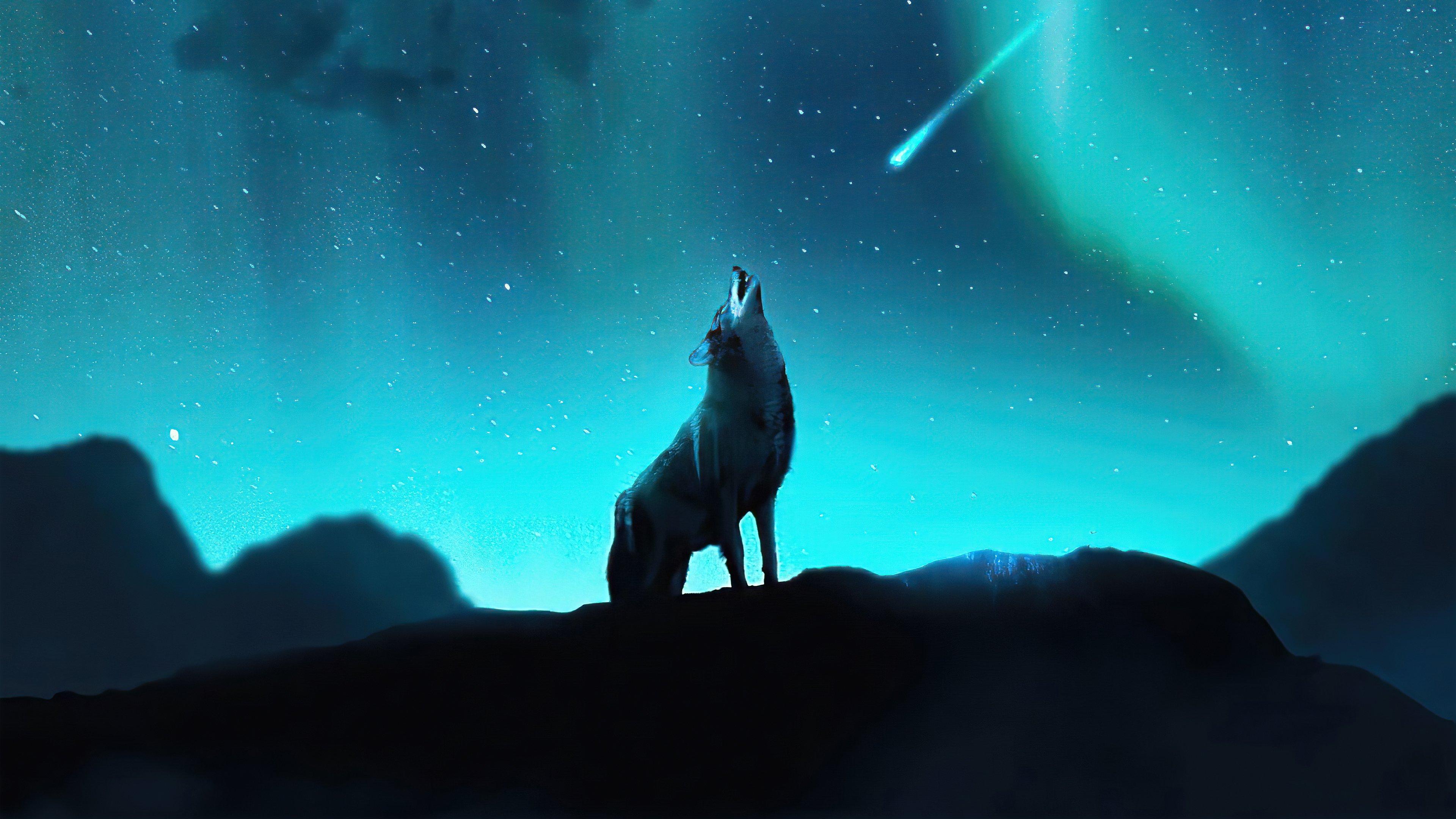 Fondos de pantalla Lobo aullando en las estrellas