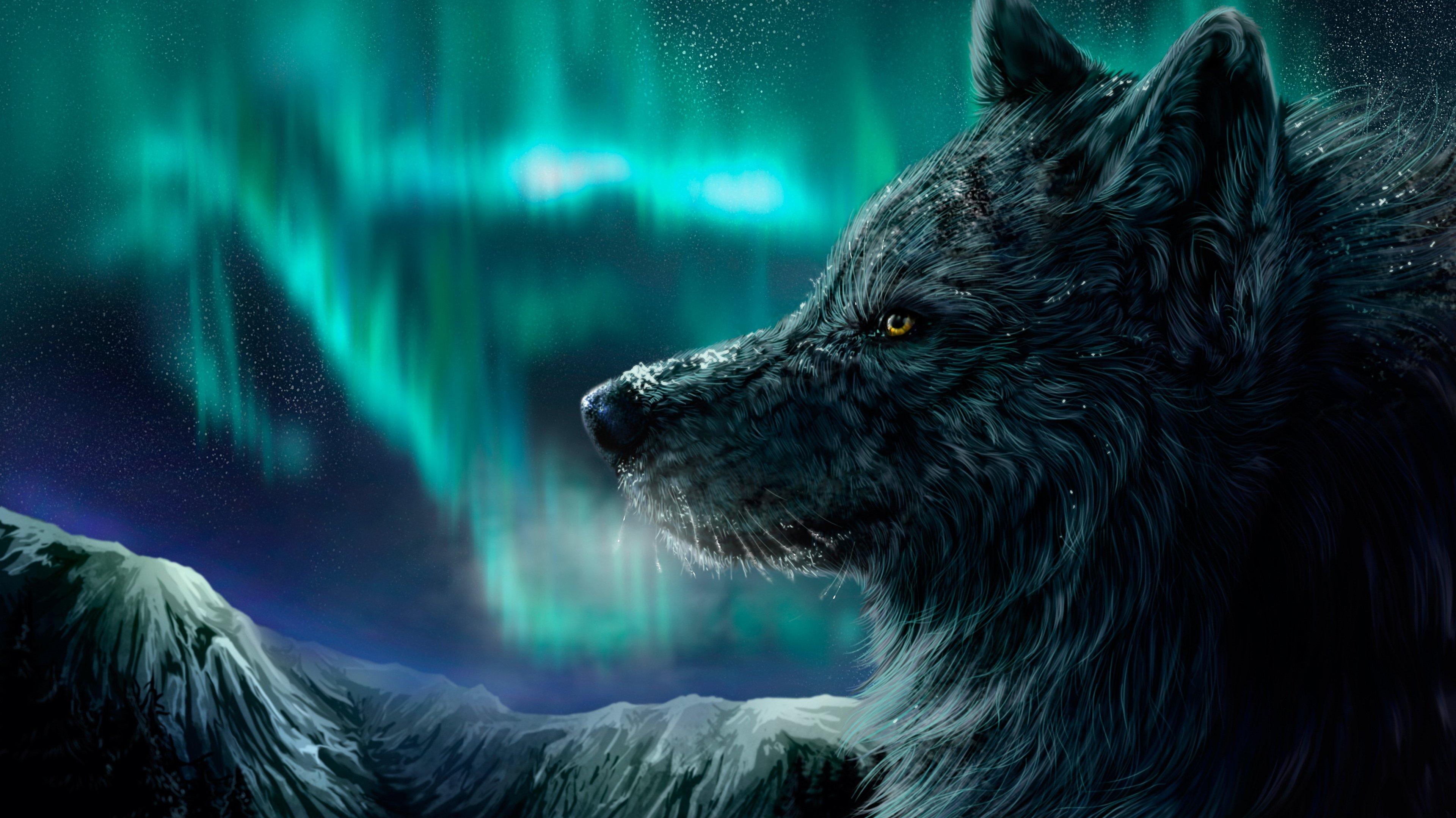 Fondos de pantalla Lobo con aurora polar de fondo