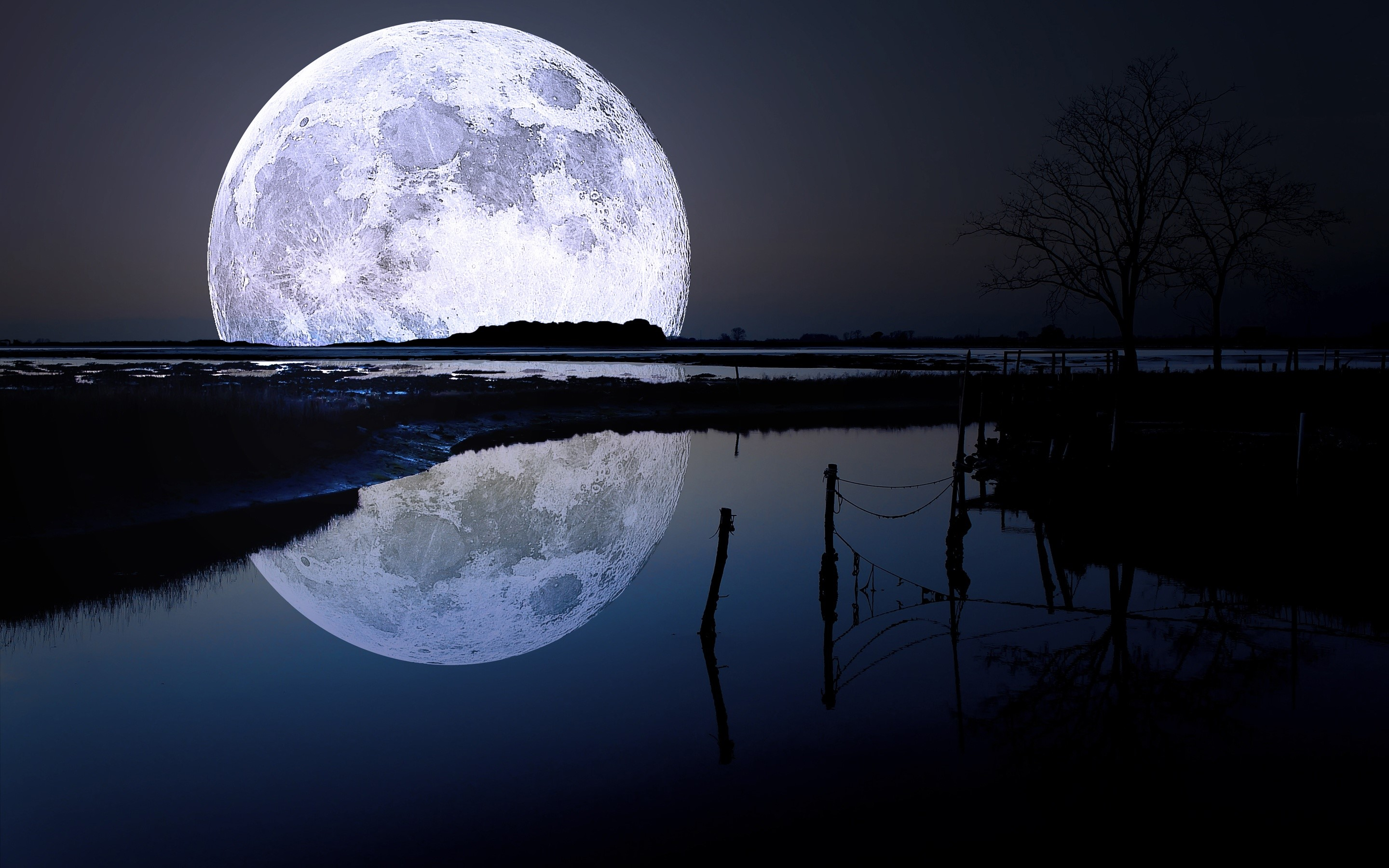 Wallpaper Full moon in a lake