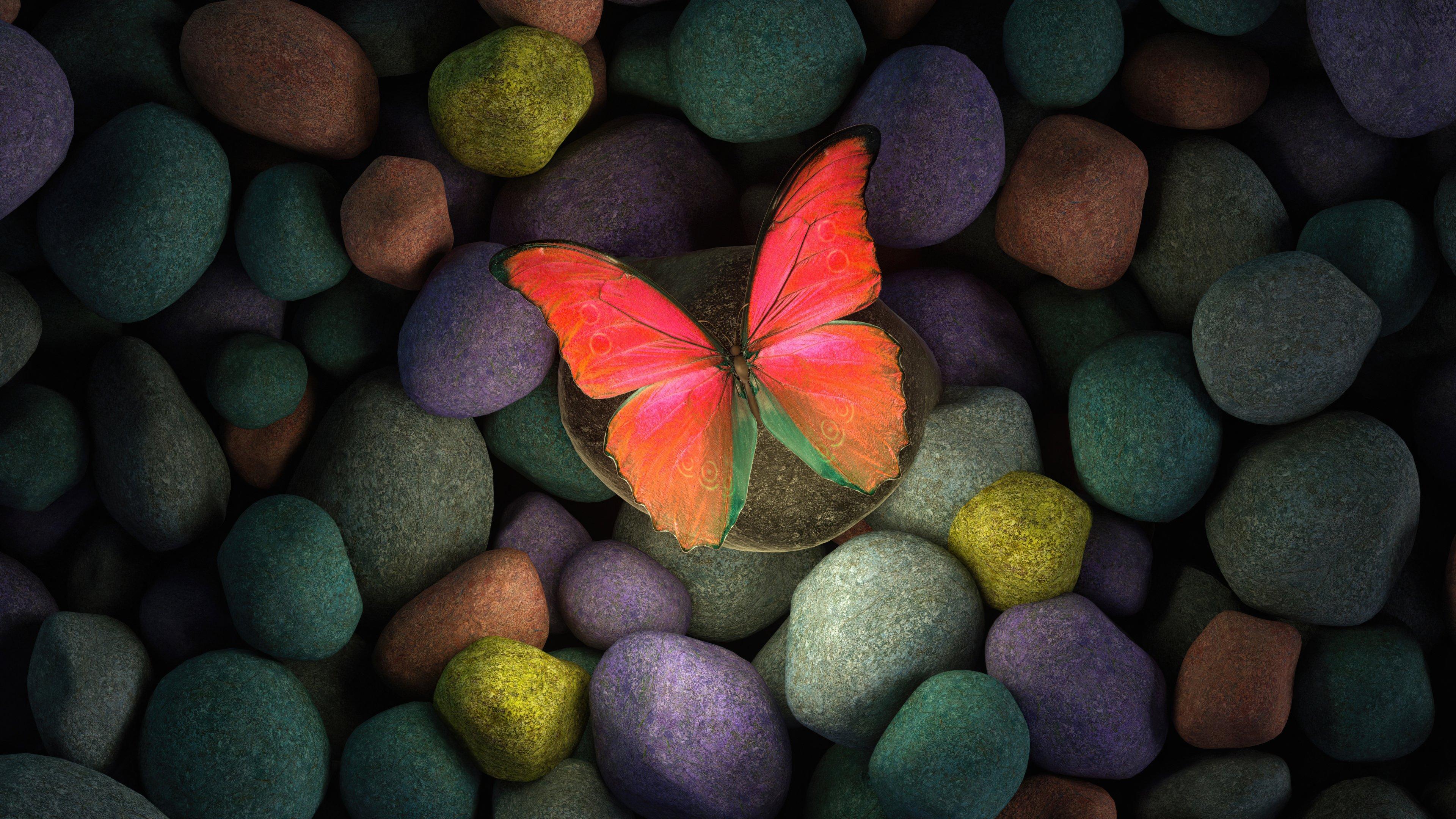 Fondos de pantalla Mariposa en piedras de colores
