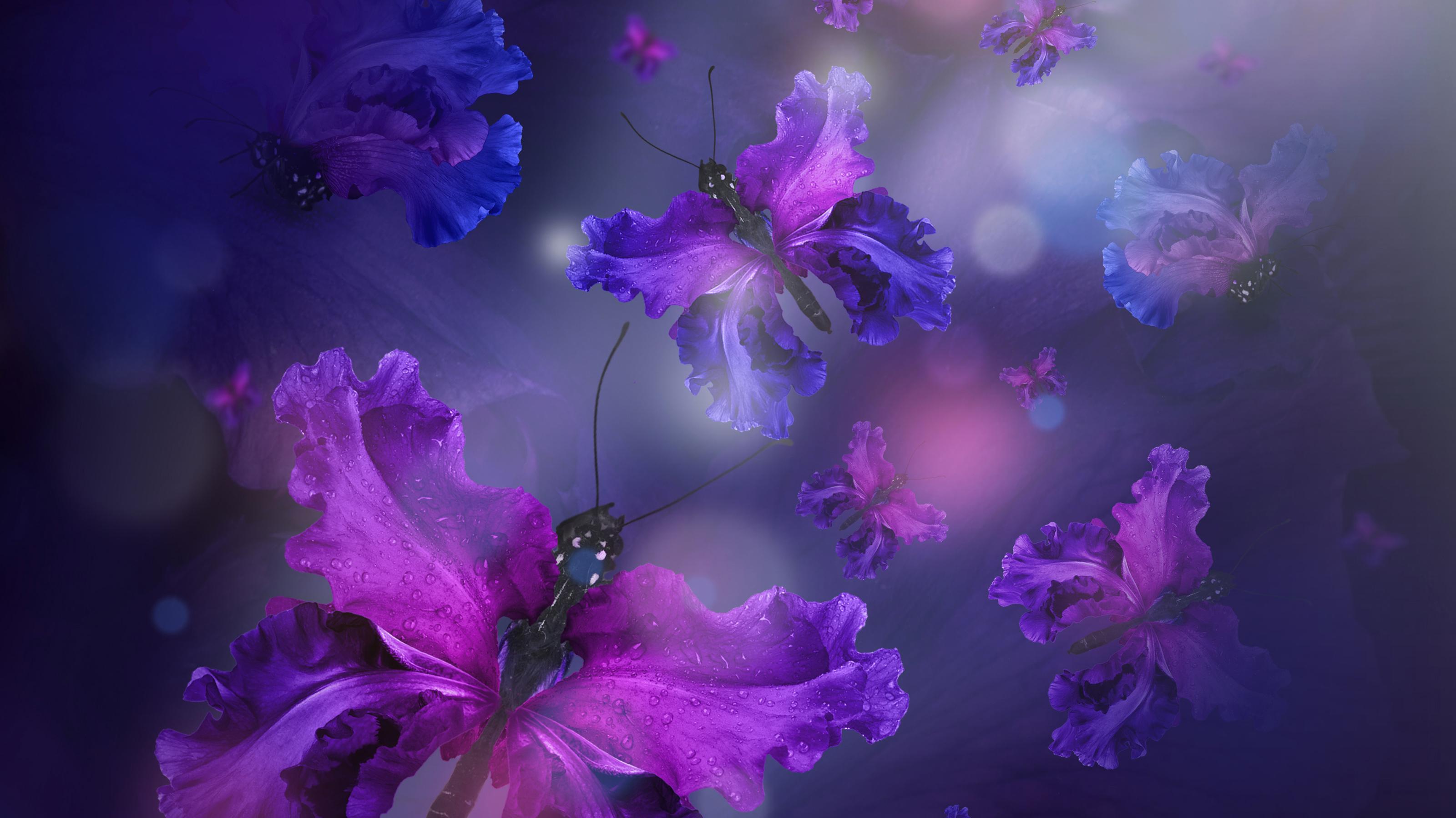 Fondos de pantalla Mariposas como flores