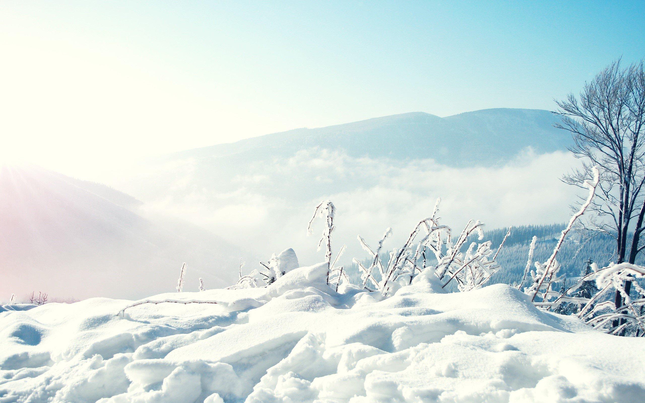 Wallpapers Montañas Nevadas: Montañas Con Nieve Fondos De Pantalla 2560x1600 #976