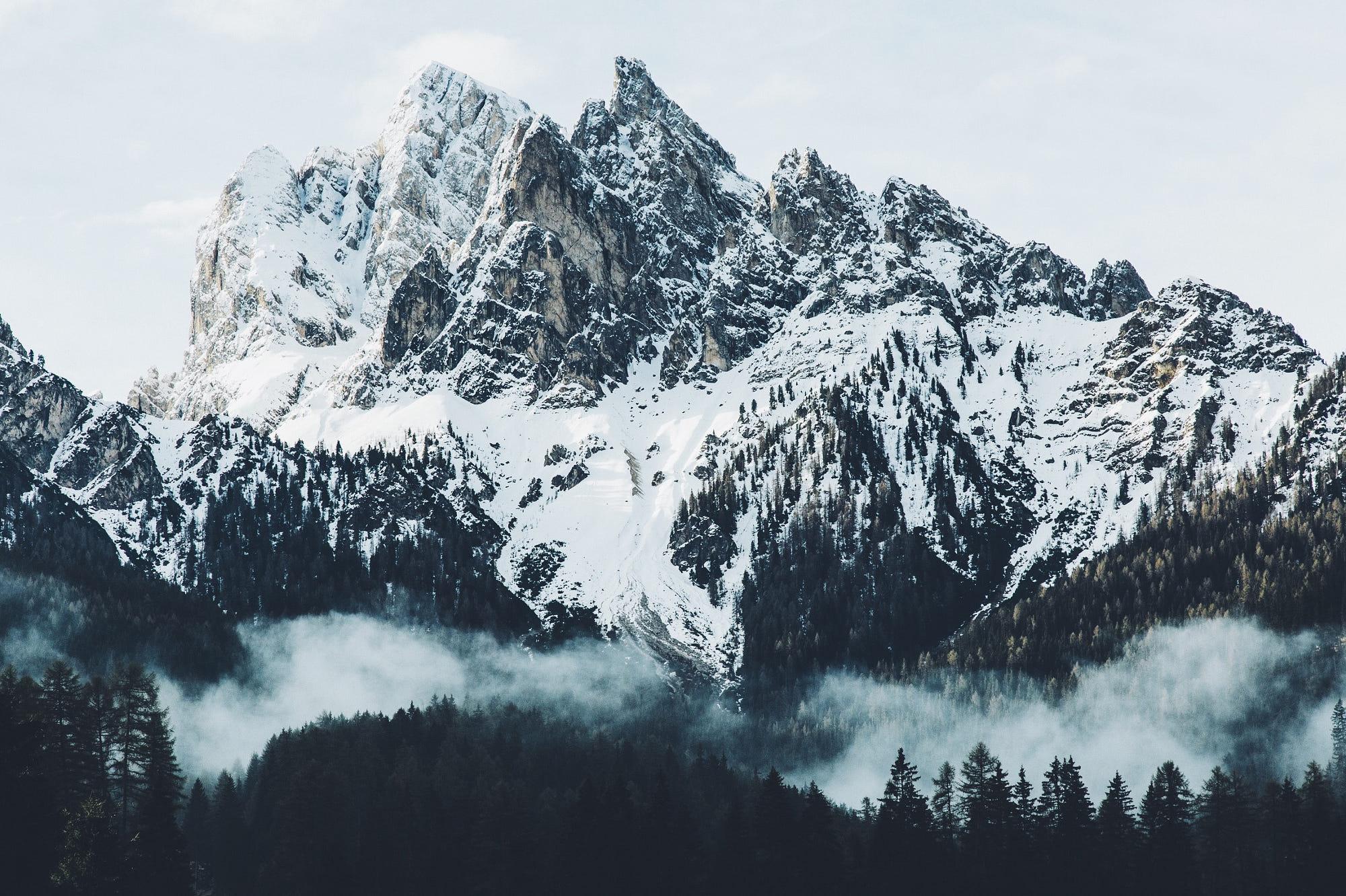 Fondos de pantalla Montañas nevadas con bosque