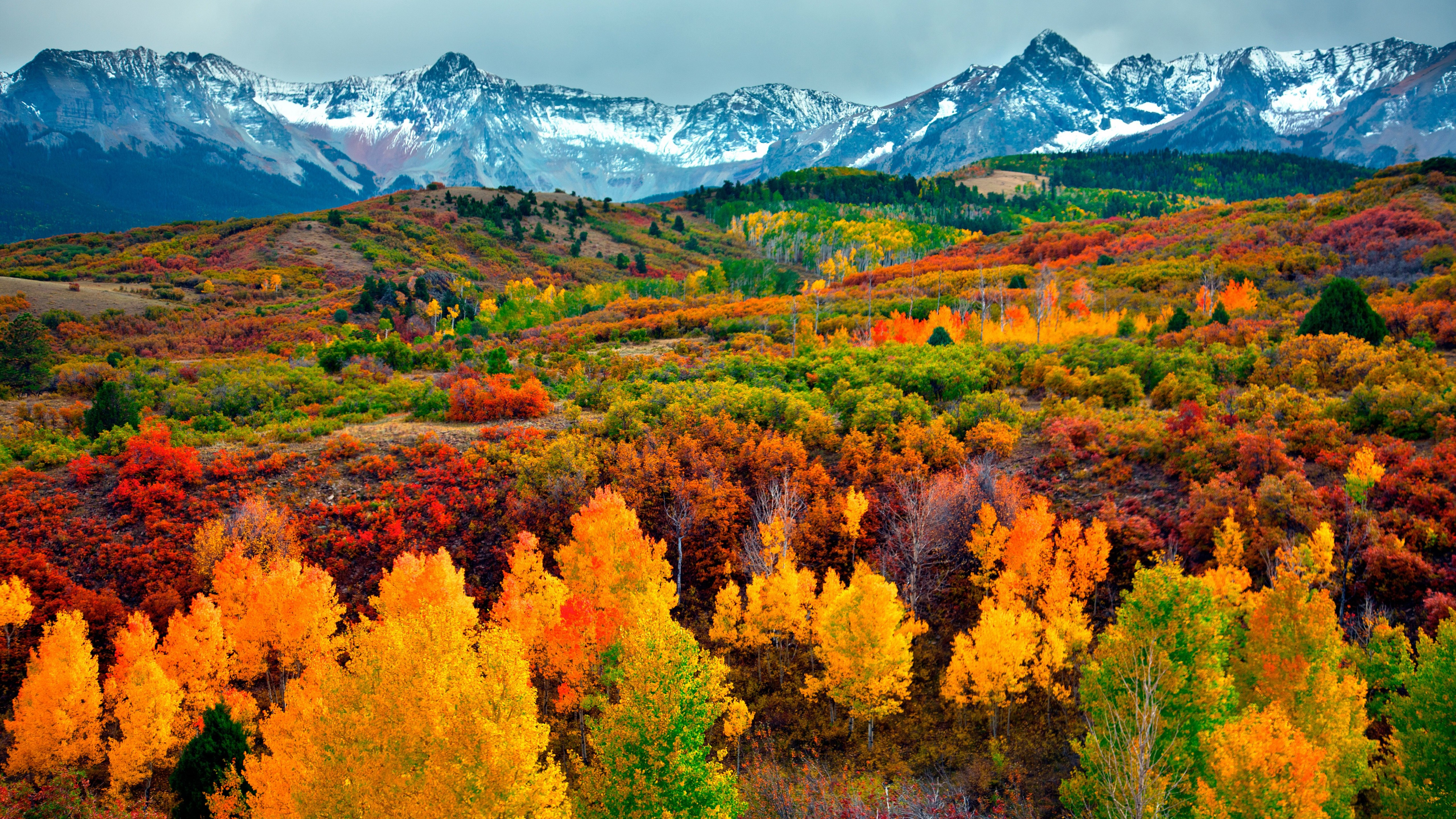 Wallpaper Mountains and forest in autumn