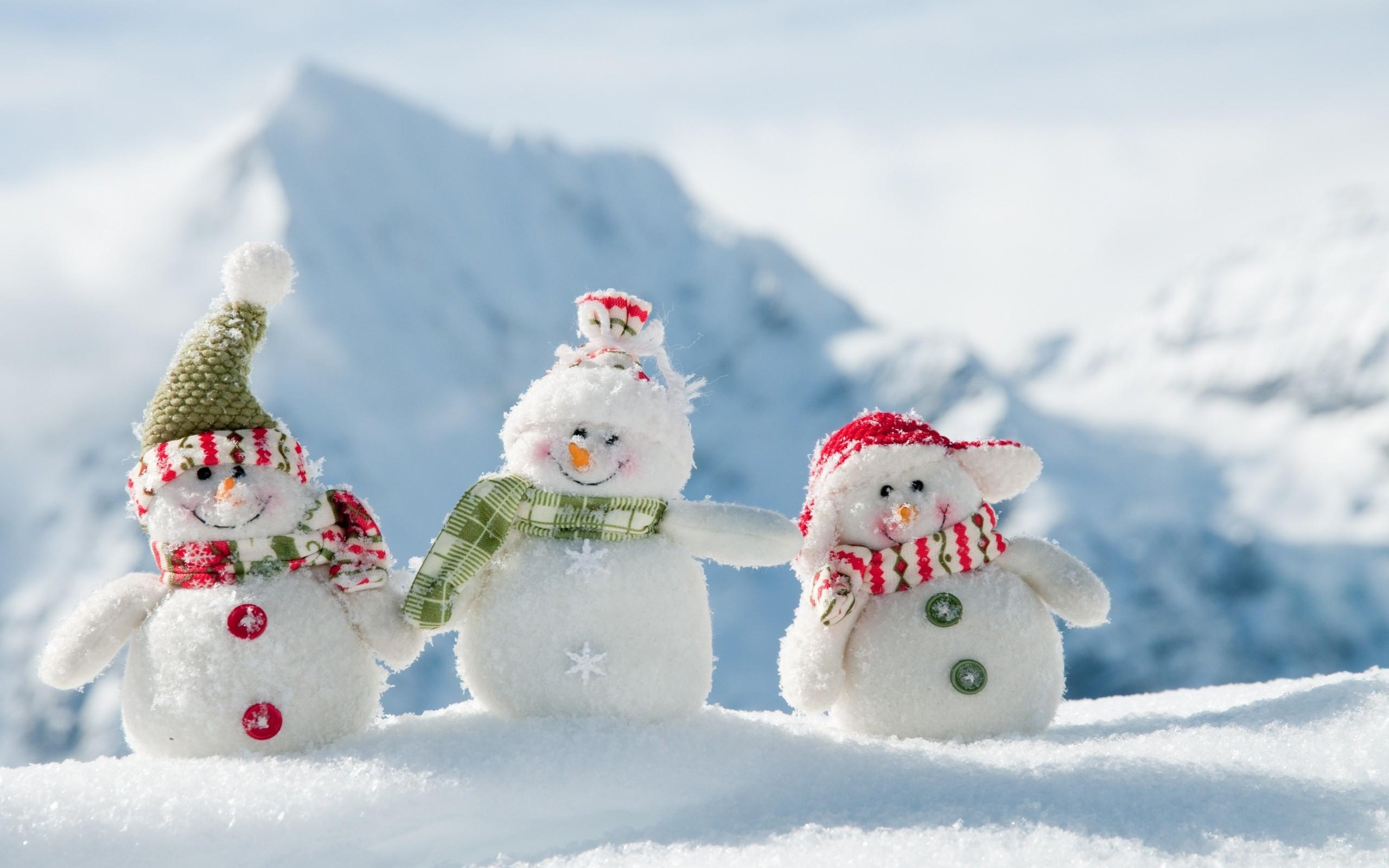 Fondo de pantalla de Muñecos de nieve en el Polo Norte Imágenes