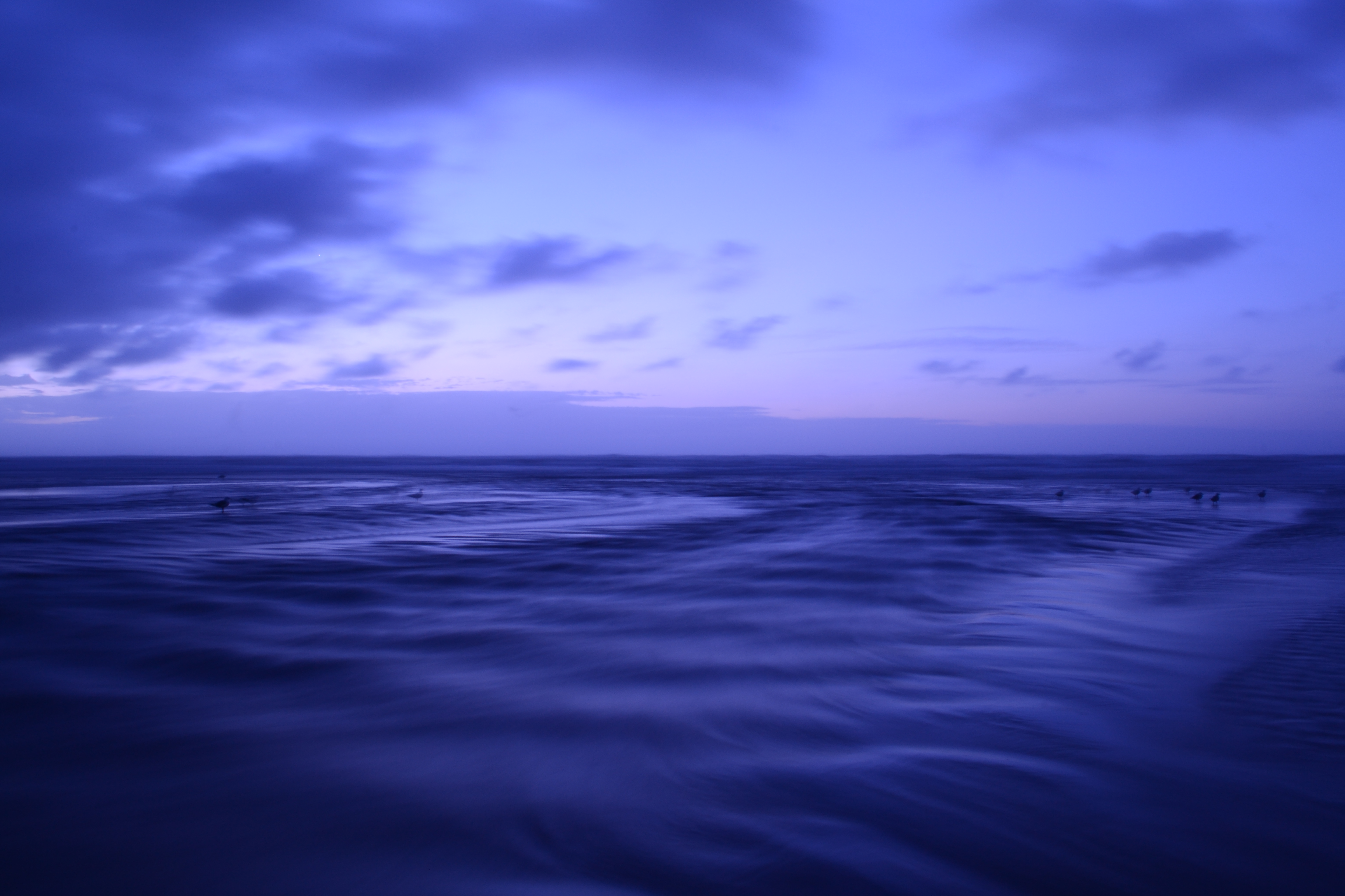 Fondos de pantalla Océano al anochecer morado