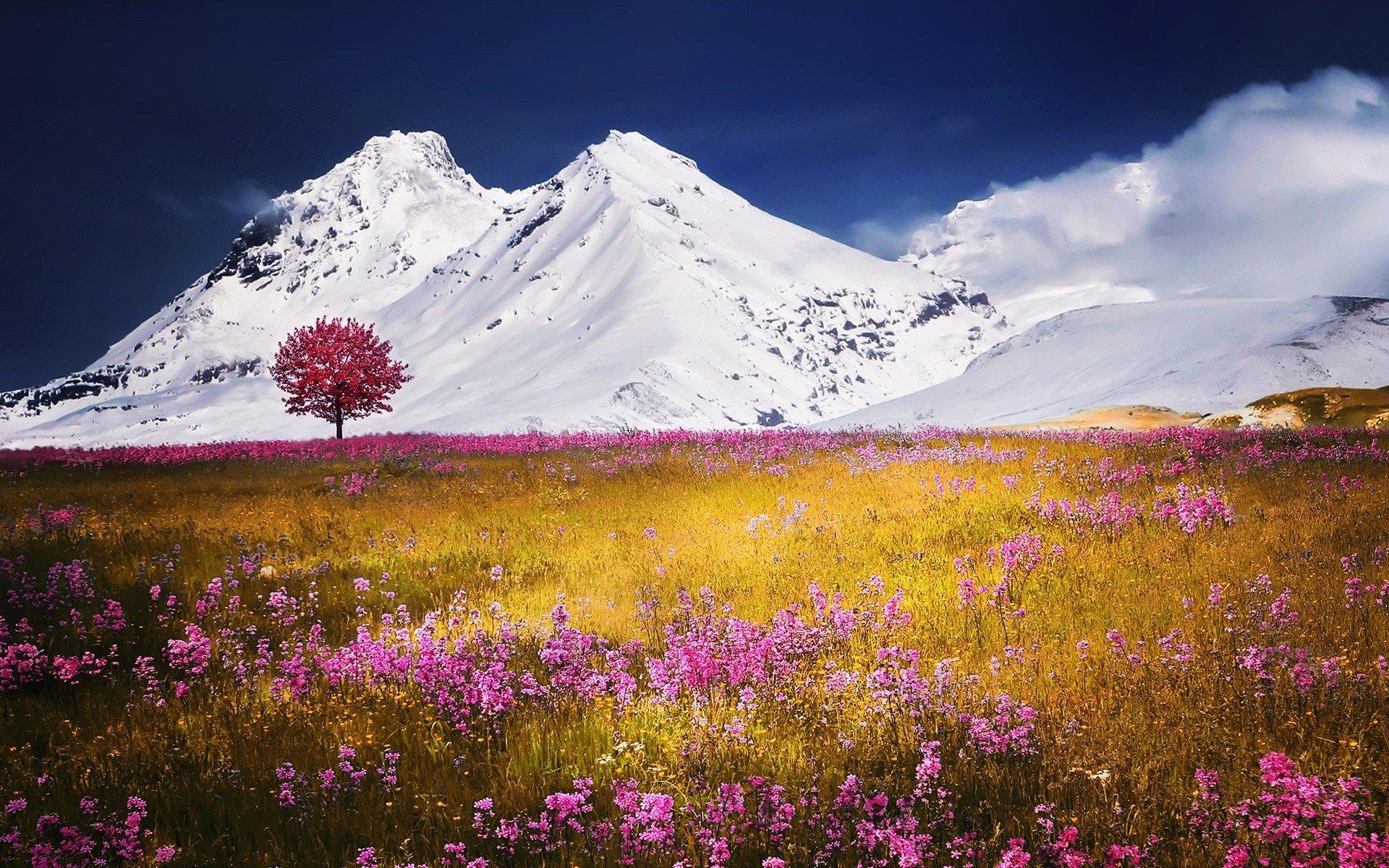 Fondos de pantalla Otoño en el campo con montañas