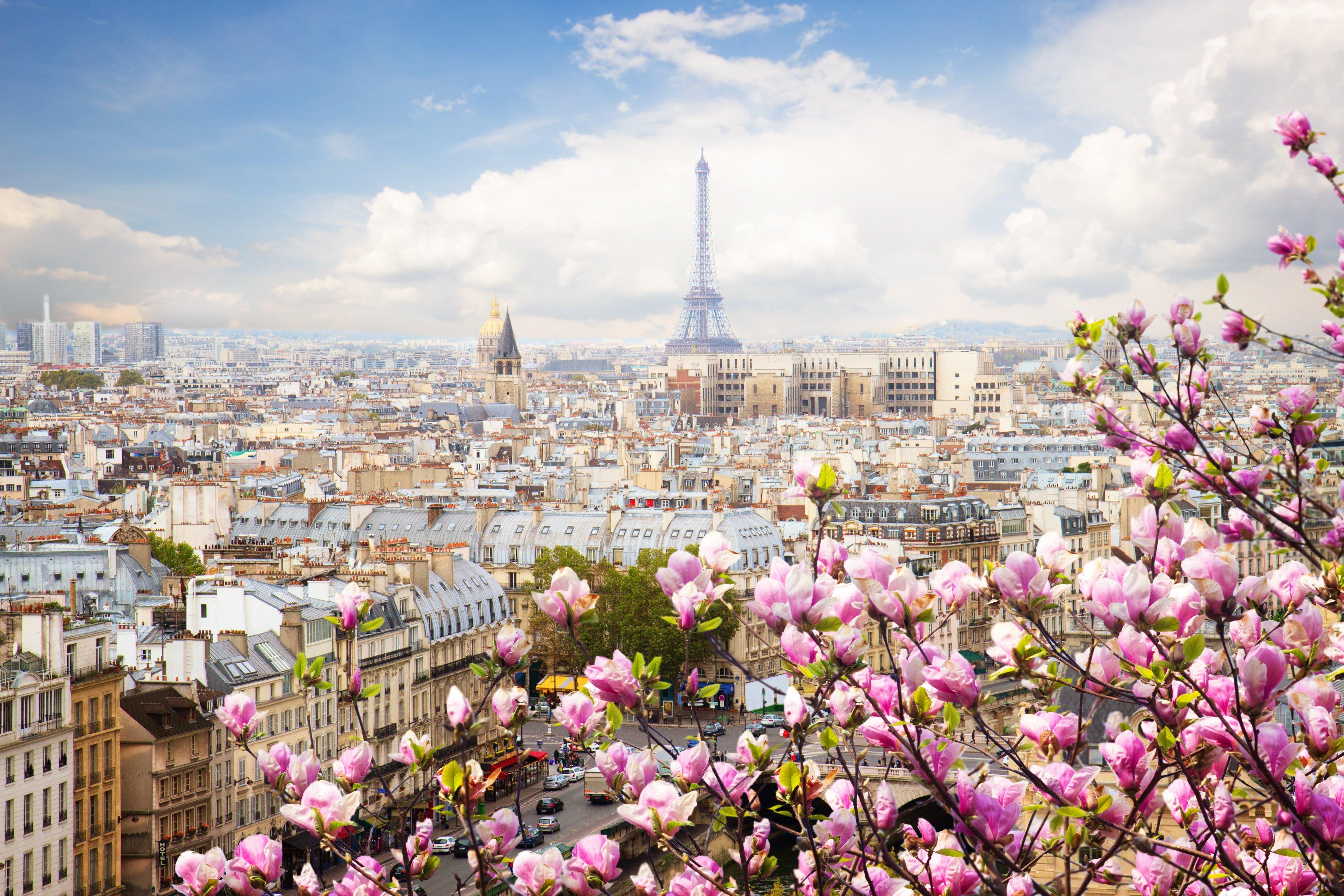 Fondos de pantalla Paisaje de Paris con flores