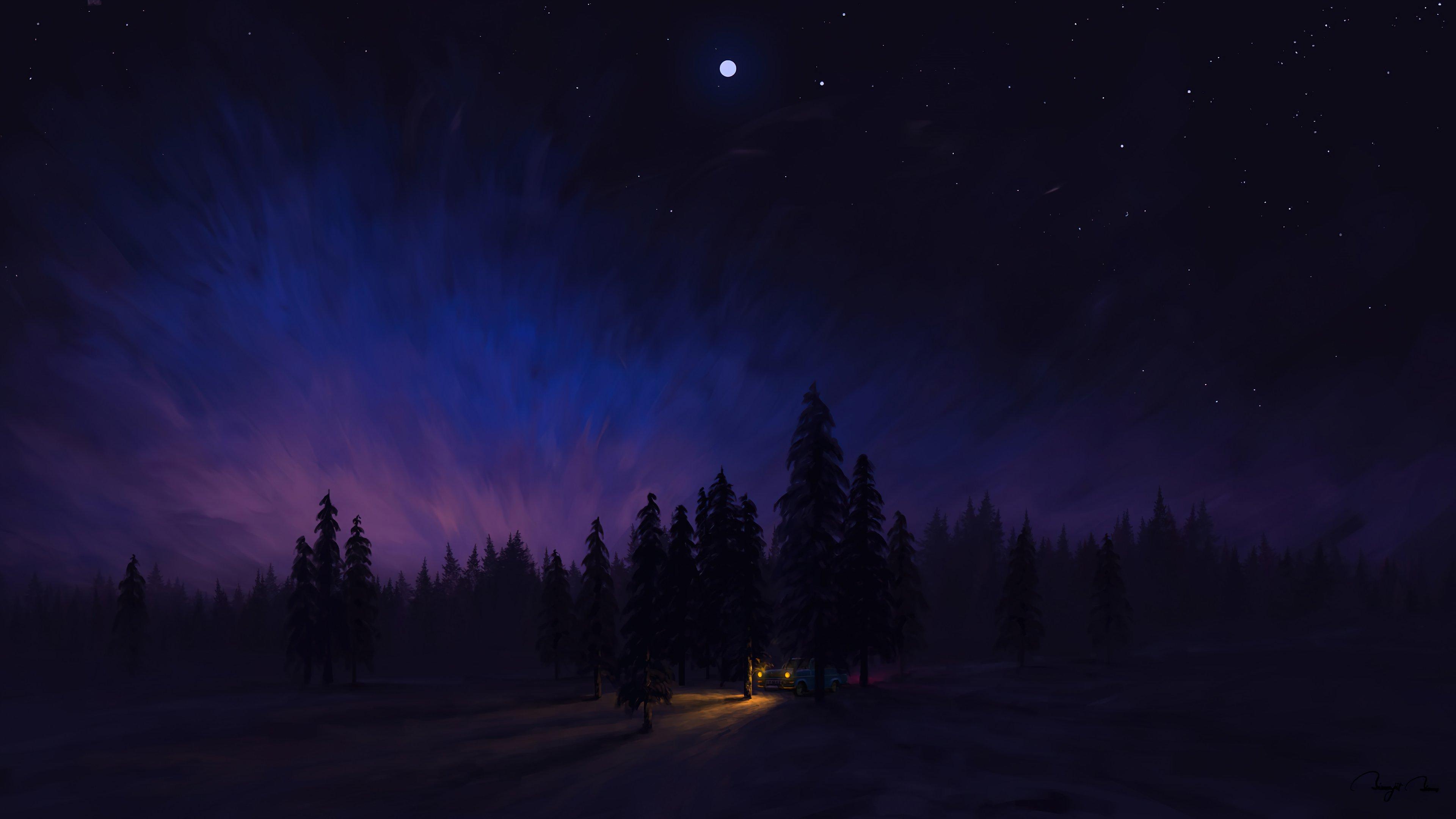 Fondos de pantalla Paisaje nocturno en el bosque Arte digital