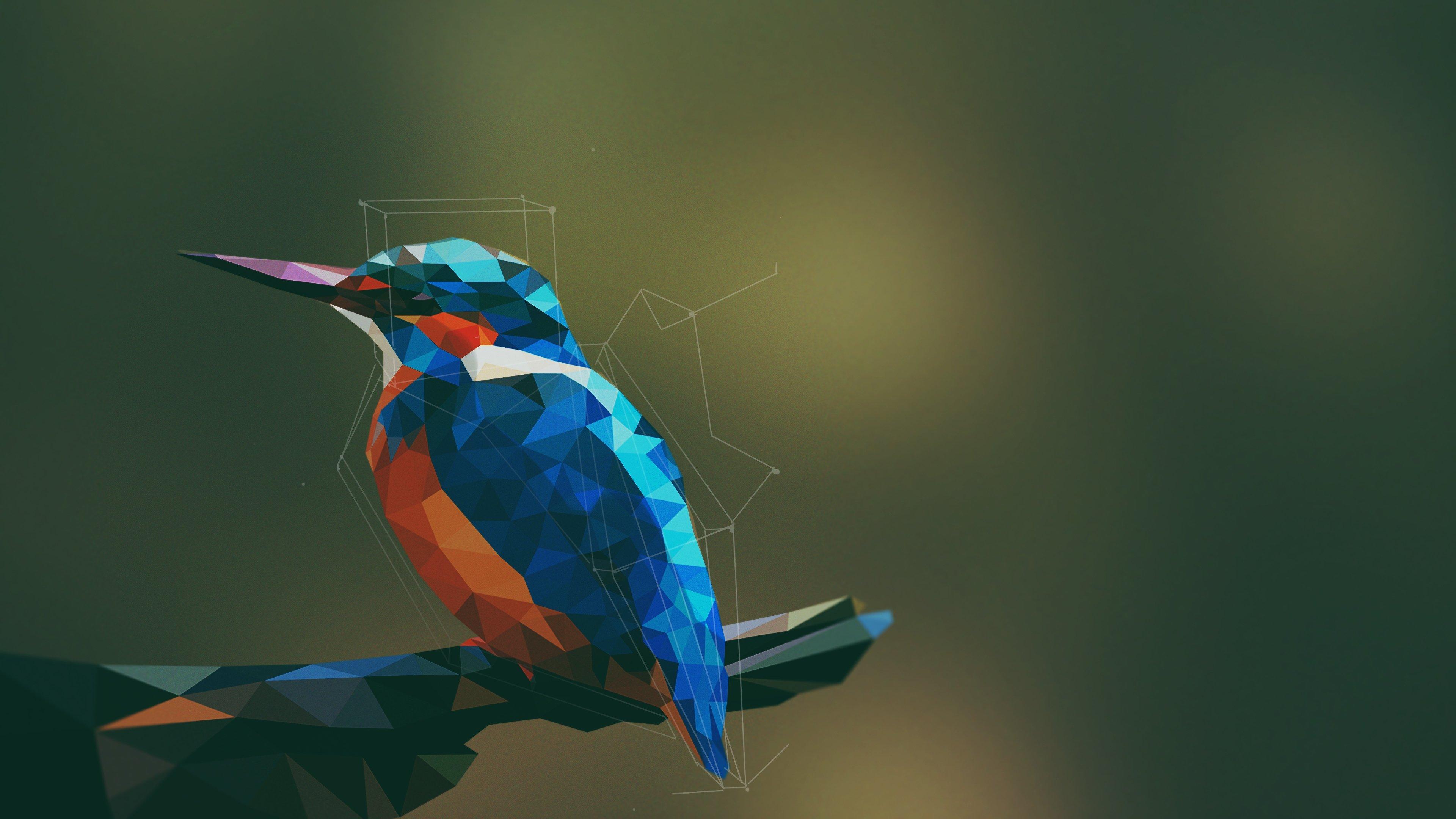 Fondos de pantalla Pájaro abstracto con arte digital