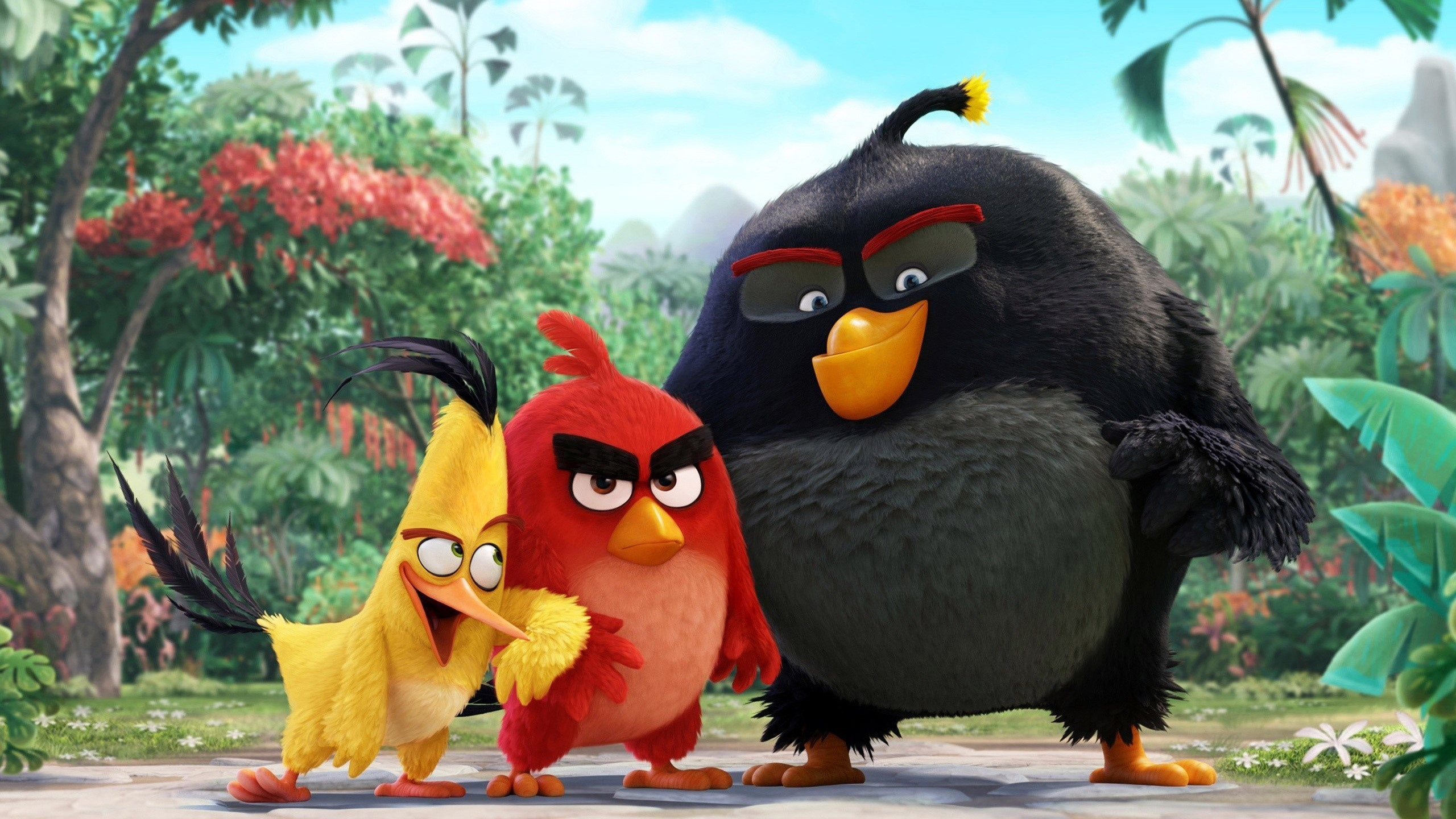 Wallpaper Angry Birds characters