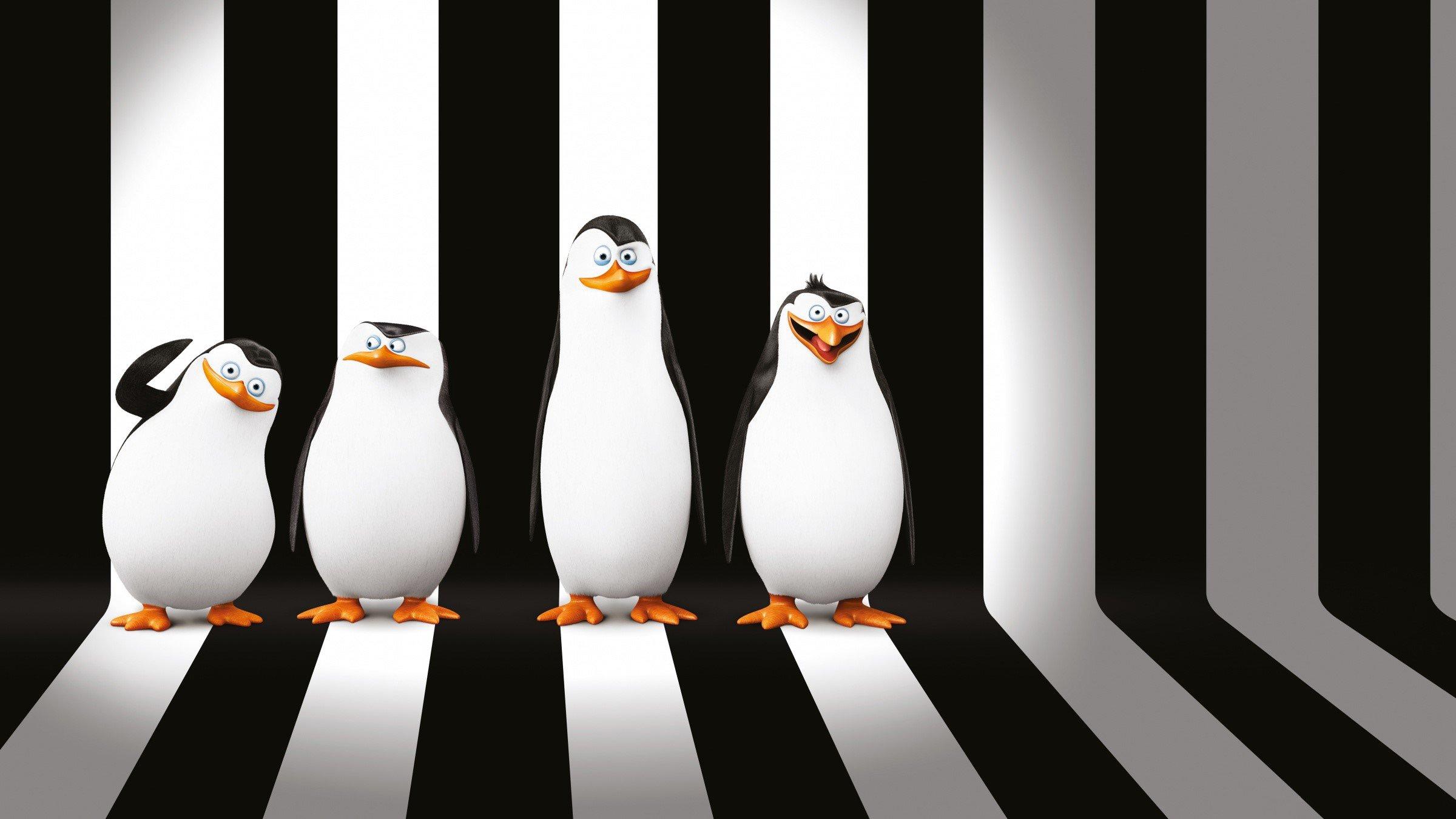 Fondos de pantalla Pingüinos de Madagascar