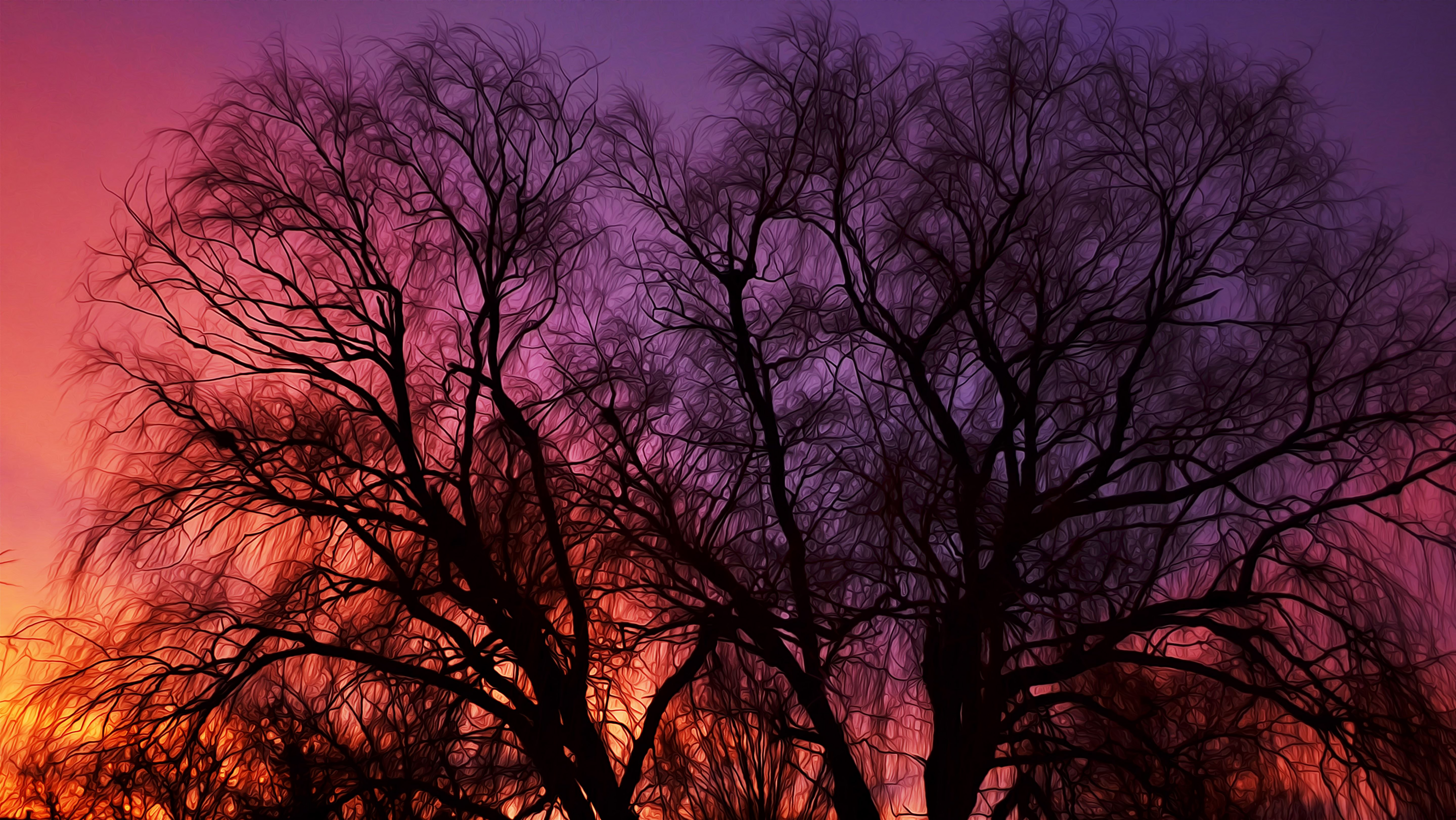 Wallpaper Painting of Tree Branches in the Sunset